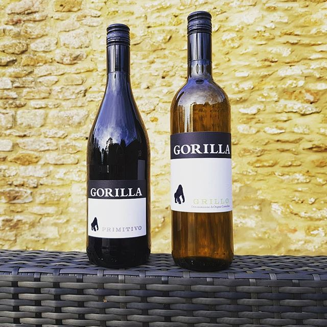 Which one for tonight? Tricky decisions.. #grillo #primitivo #gorillawines