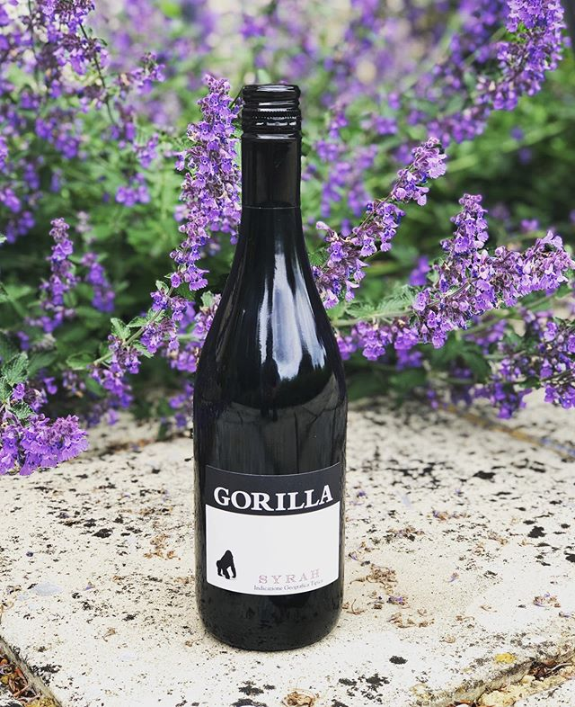 Weekend plans sorted? 🦍🍷 • • • #gorilla #gorillawines #redwine #lavender #wildlife #flowers