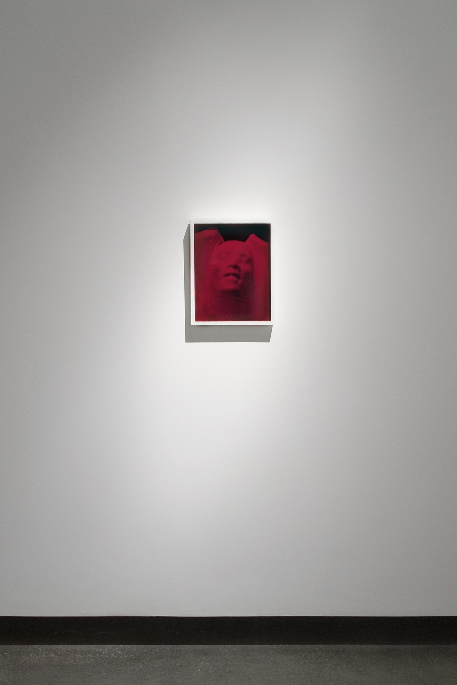 "Proud Flesh (2011), chromogenic print and glass, 15"" x 12"""