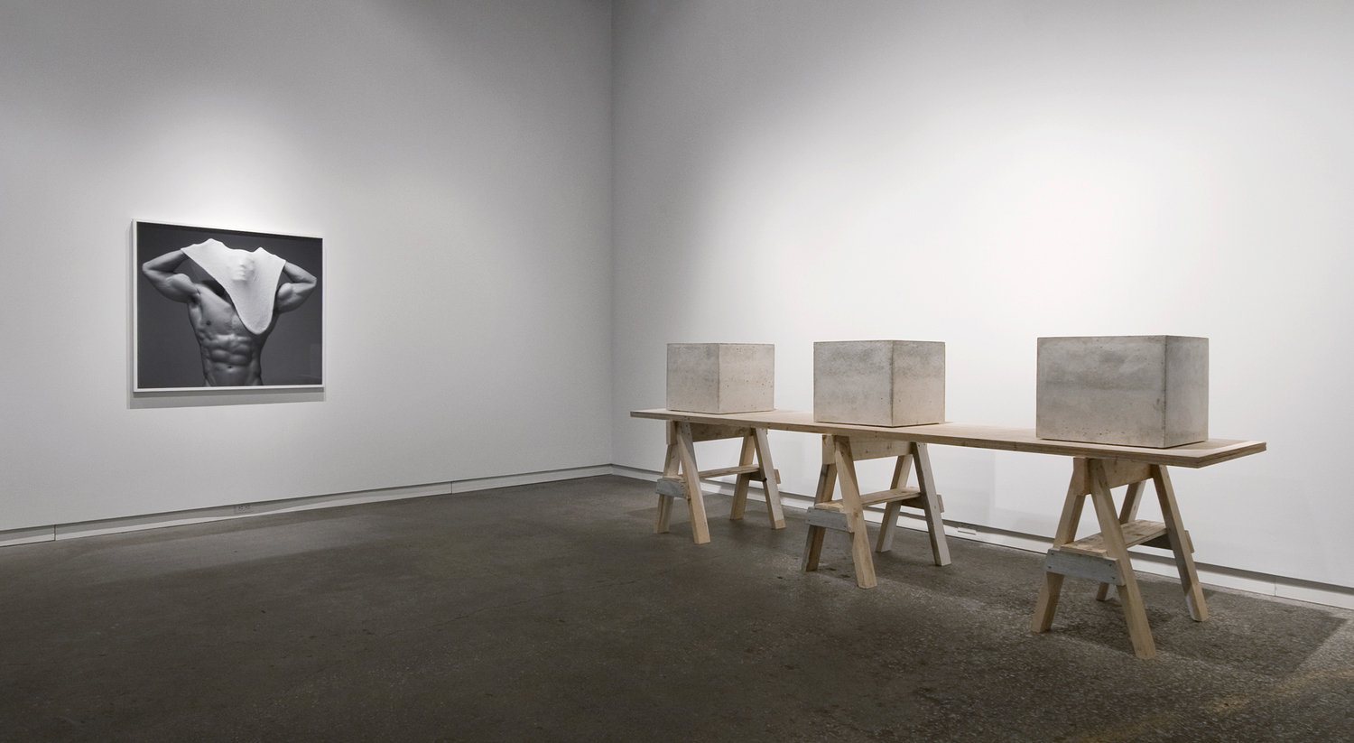 """Proud Flesh (2011), cast concrete and glass, three objects; 18"""" x 18"""" x 18""""   Beside Myself  (2011), chromogenic print; all prints are 40"""" in height  Installation view of  Beside Myself  at Daniel Faria Gallery, Toronto, Canada"""