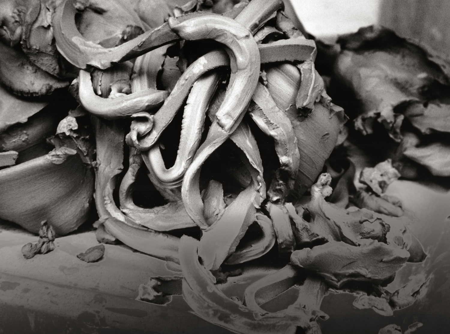 Untitled (Clay Portfolio)  (2013) gelatin silver print, 7 3/4′′ x 5 3/4′′, from a portfolio of 21 images