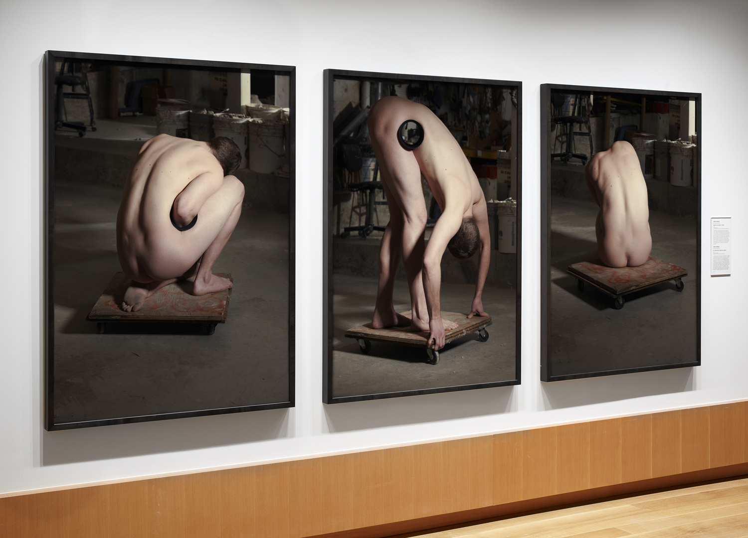 "Model in the Sculptor's Studio  (2010) chromogenic prints; 55"" x 40"" (each)  Installation view at Art Gallery of Ontario, Toronto, Canada"