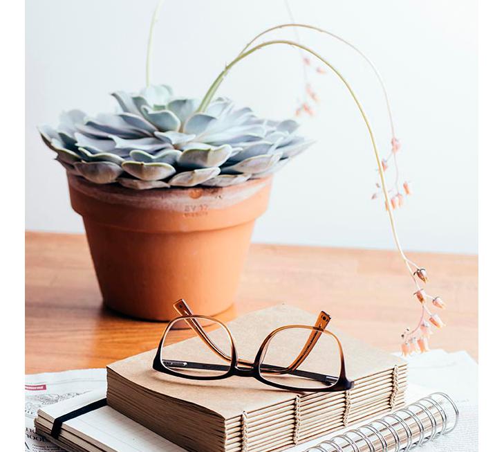Potted plant on desk