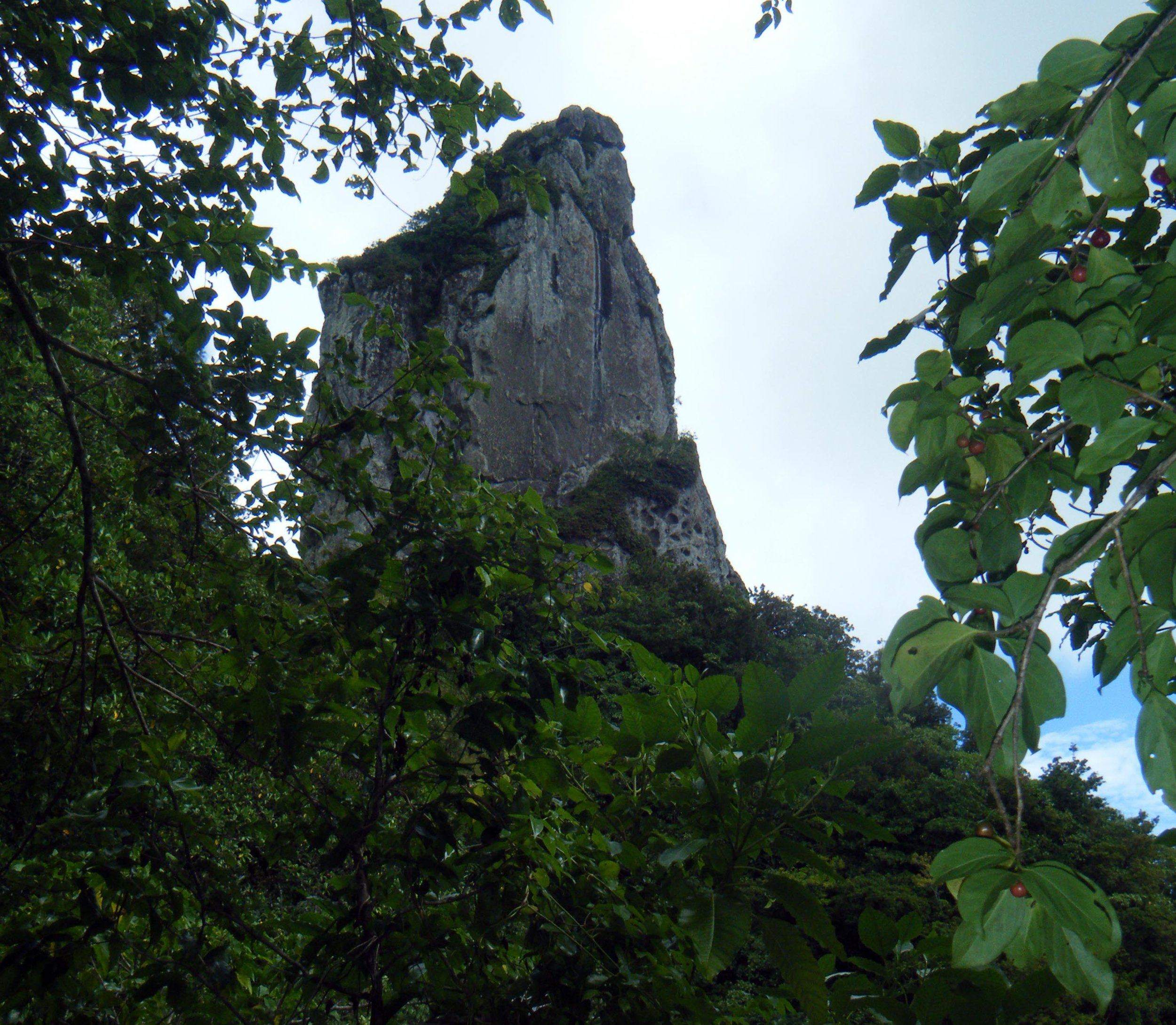 middle of Rarotonga.jpg