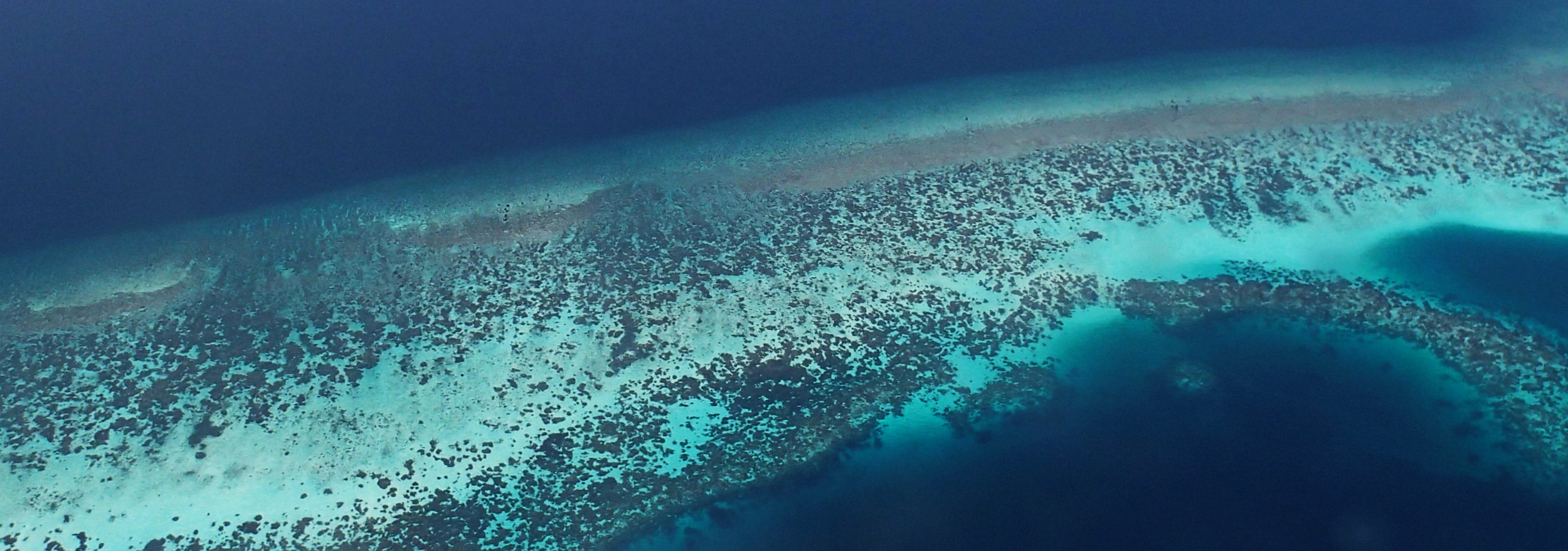 Maldivian reefs.jpg
