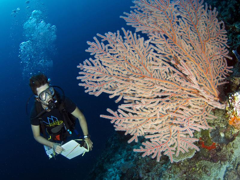 underwater douche hair