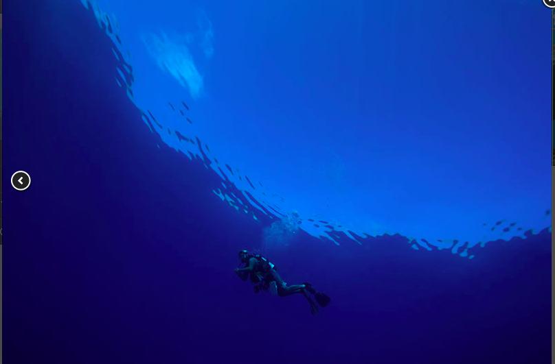 calm seas.png