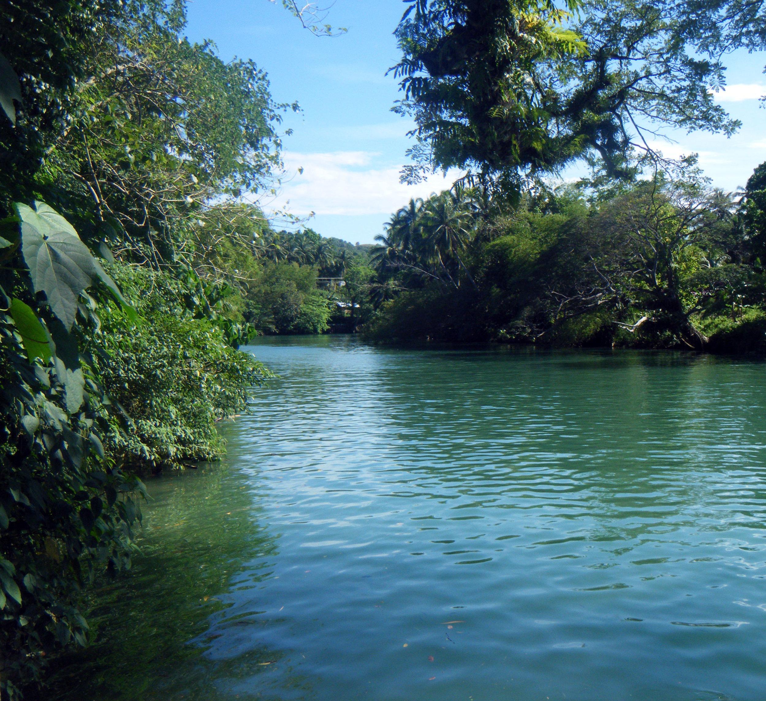 Loboc River Bohol.jpg
