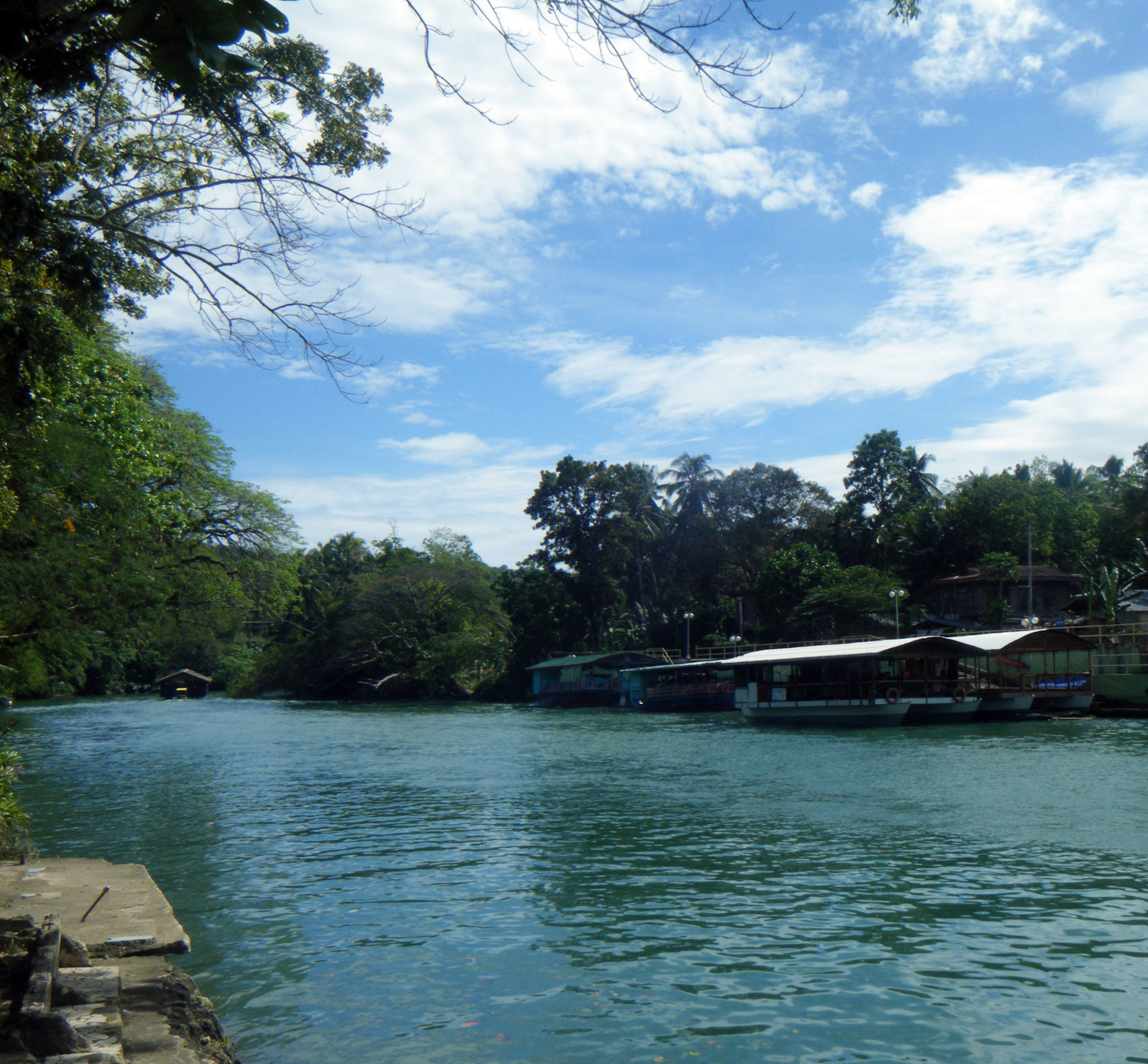 Loboc River.jpg