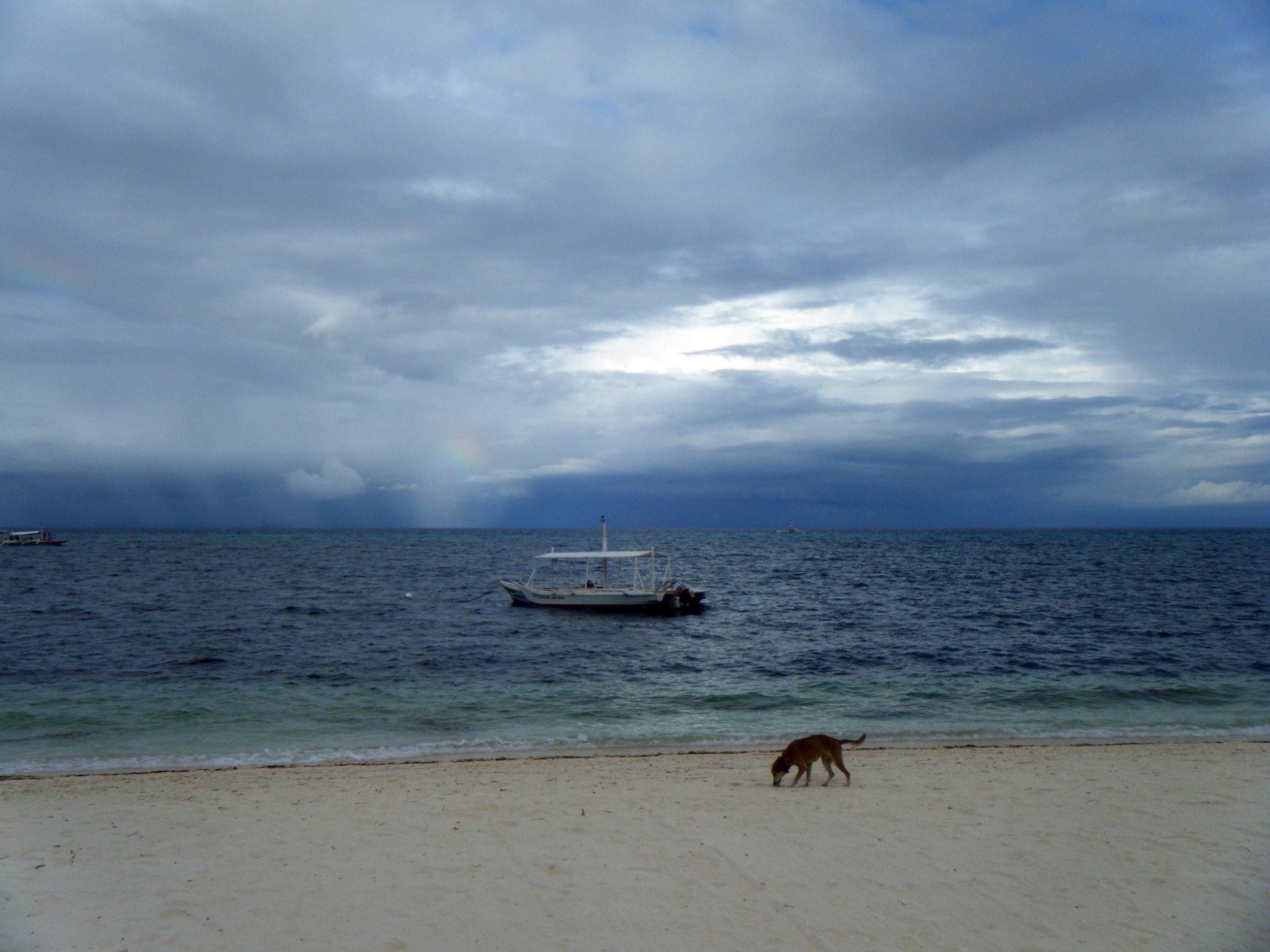 afternoon storm.jpg
