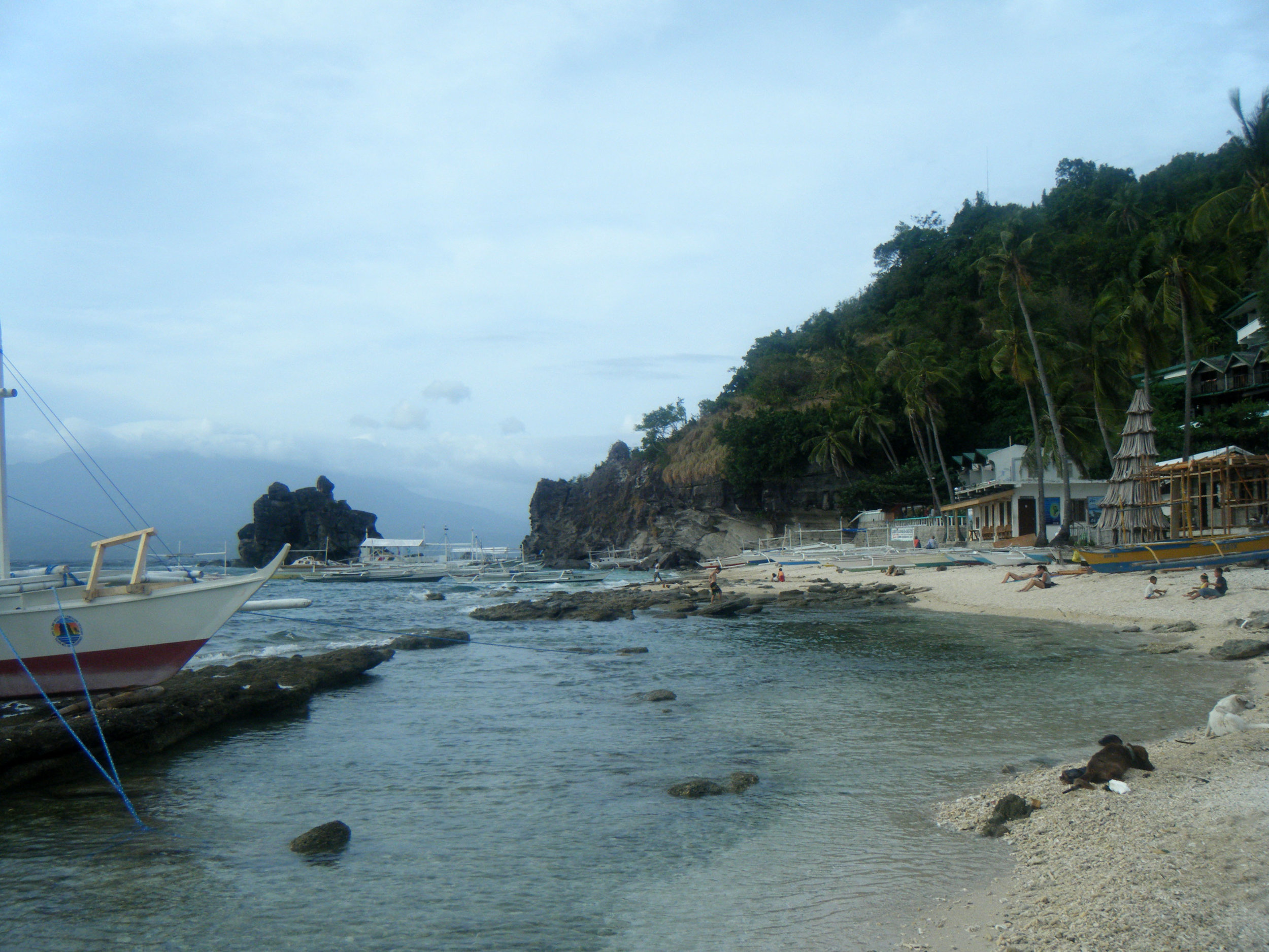 beautiful Apo Island.jpg