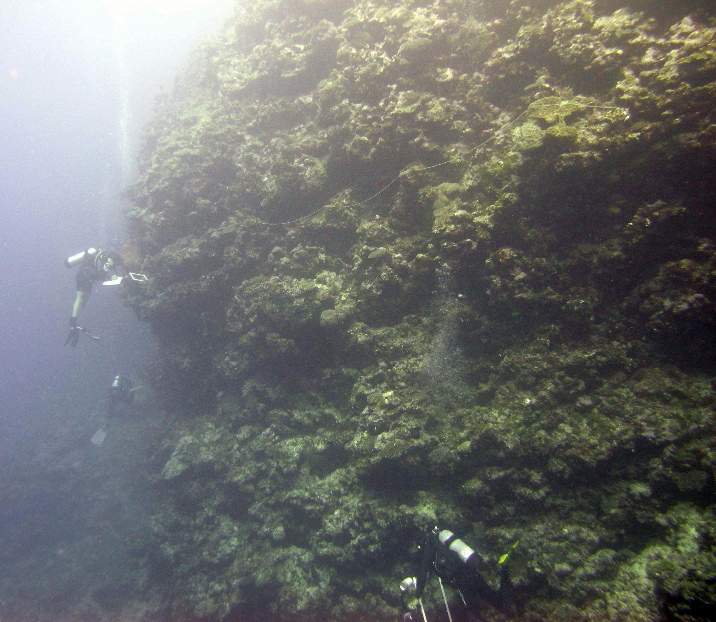divers at work.jpg