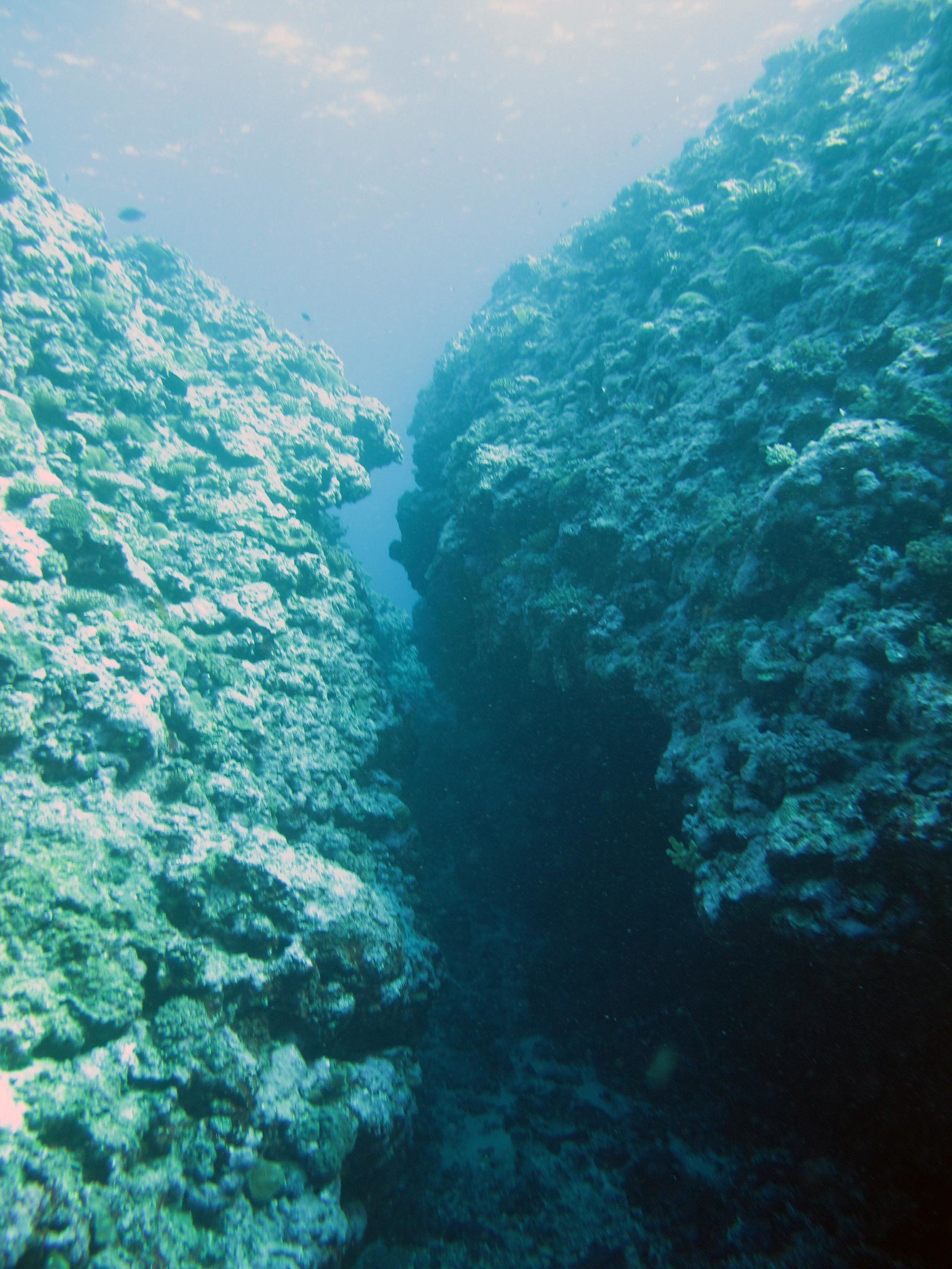 coral canyon.jpg