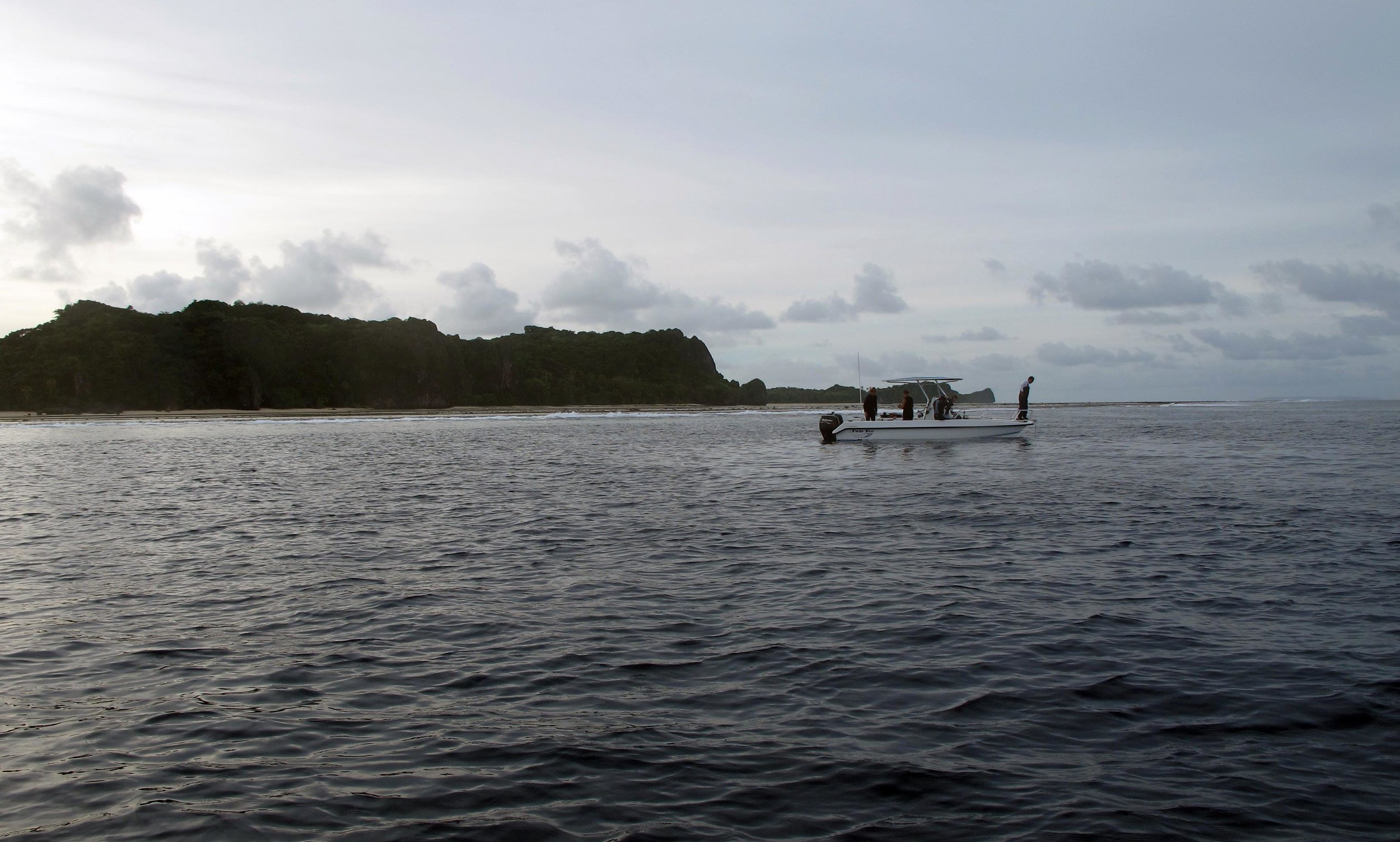 diving off Cicia