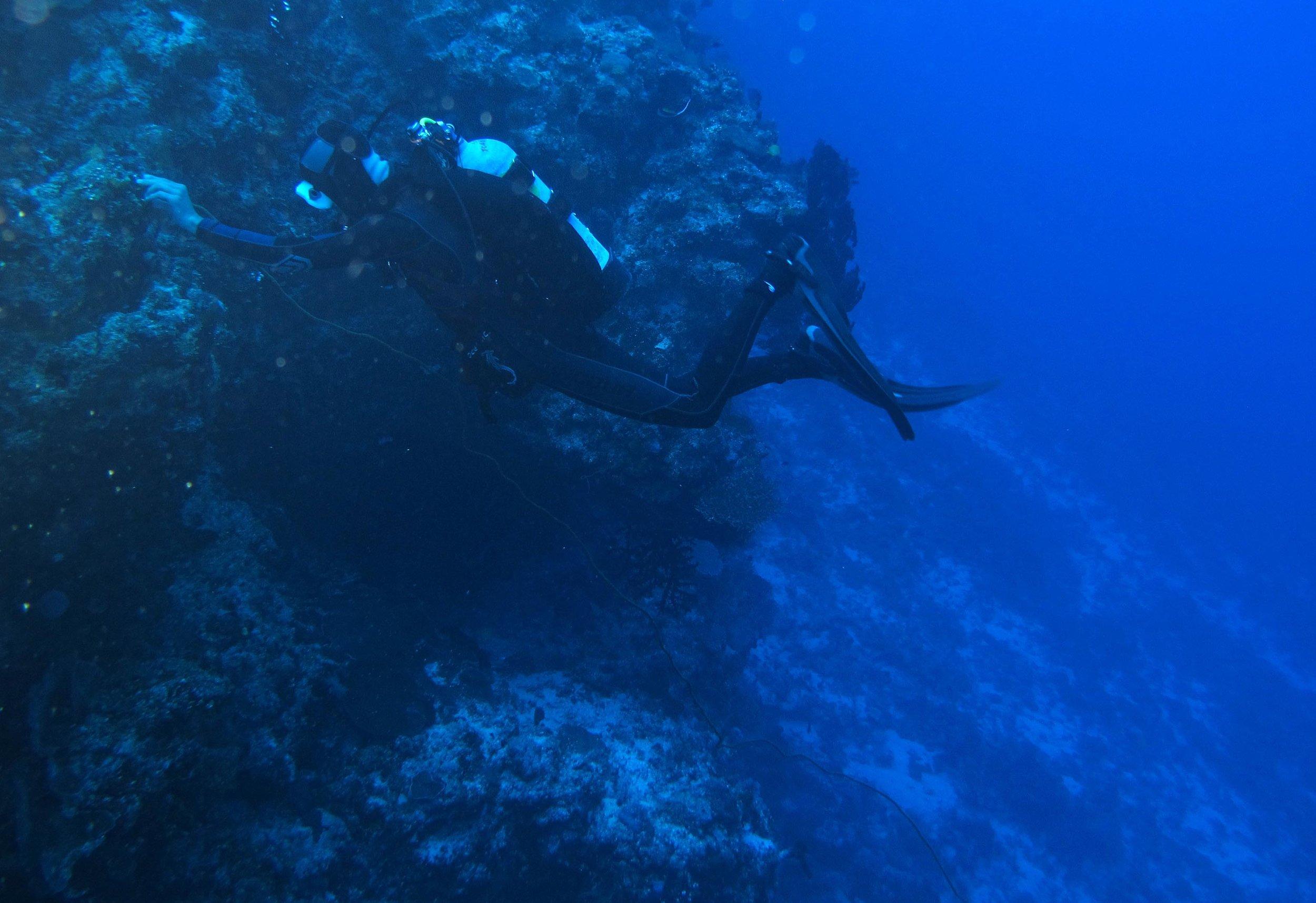 31 meters below.jpg