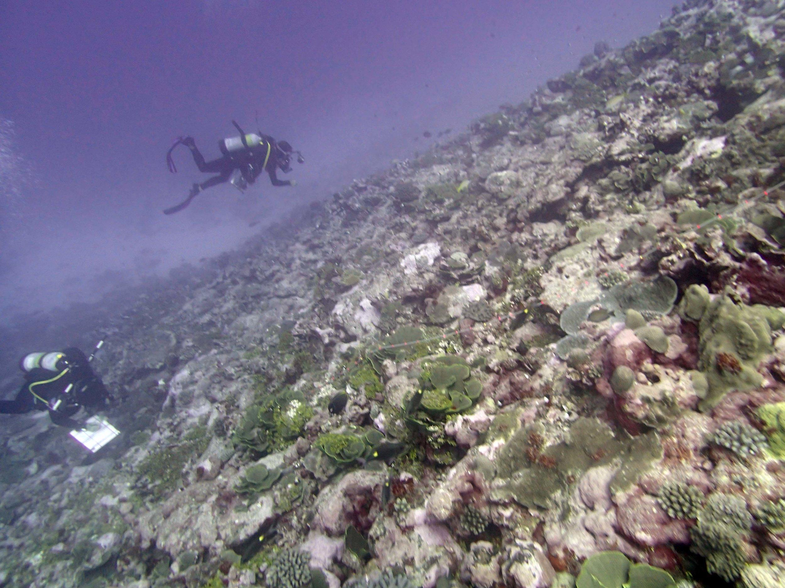 deep water.jpg