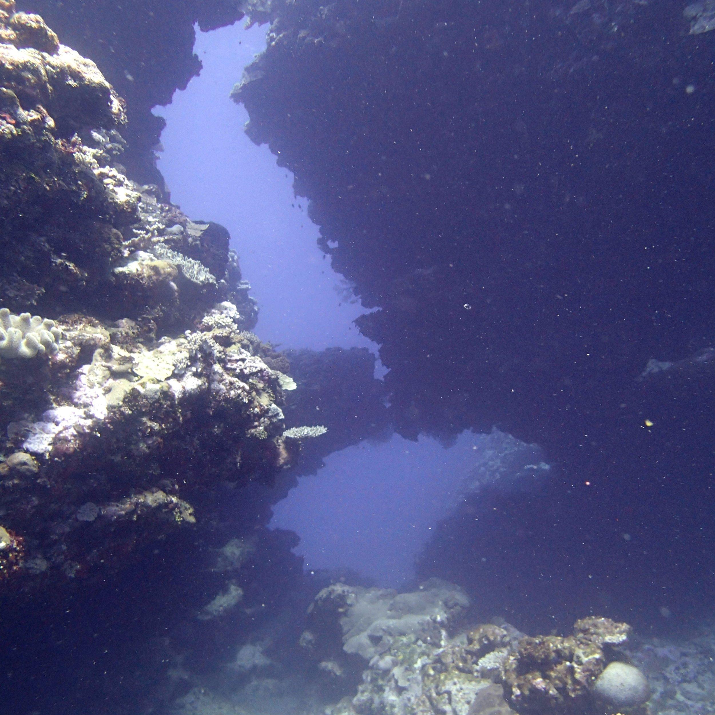 double swim through.jpg