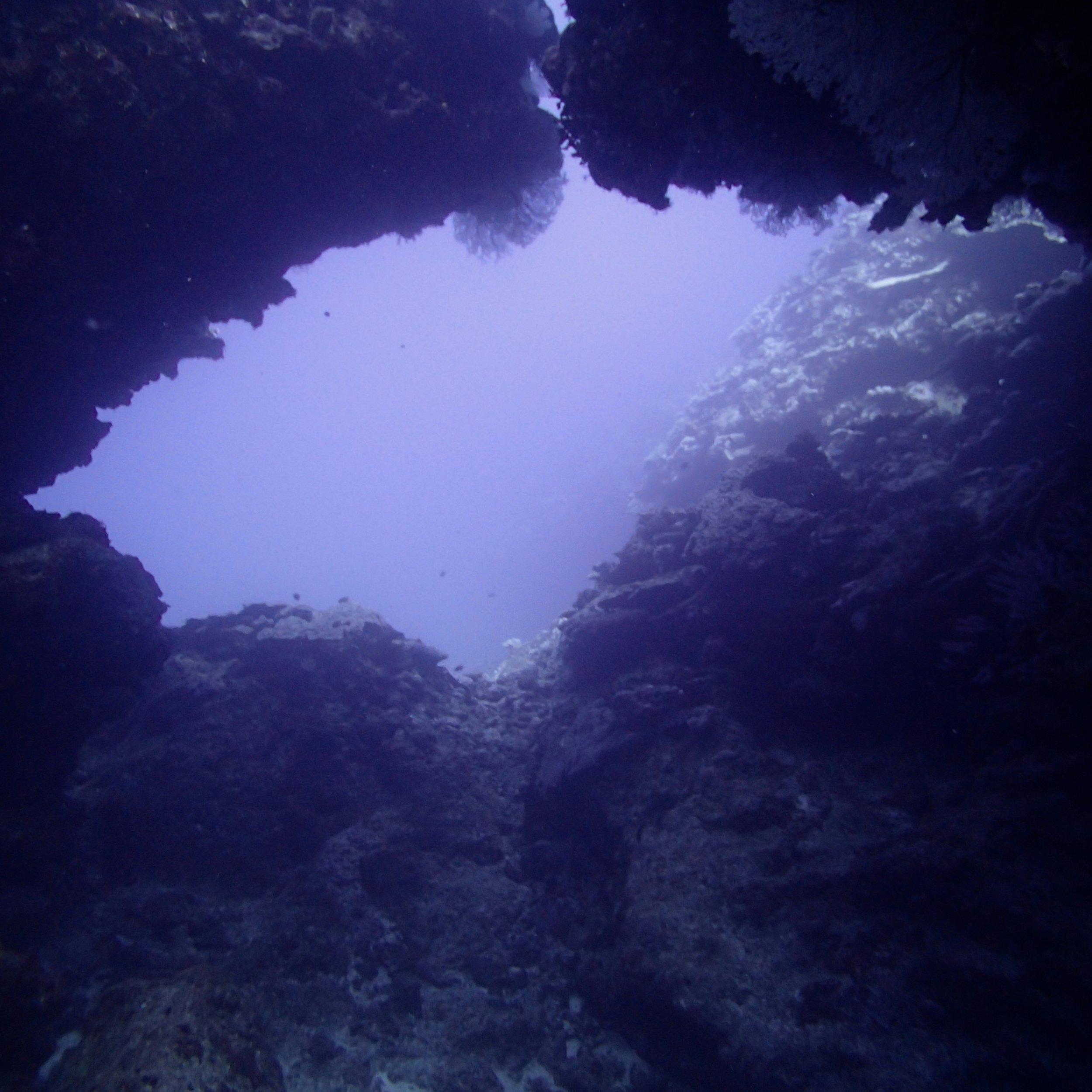 swim-through.jpg