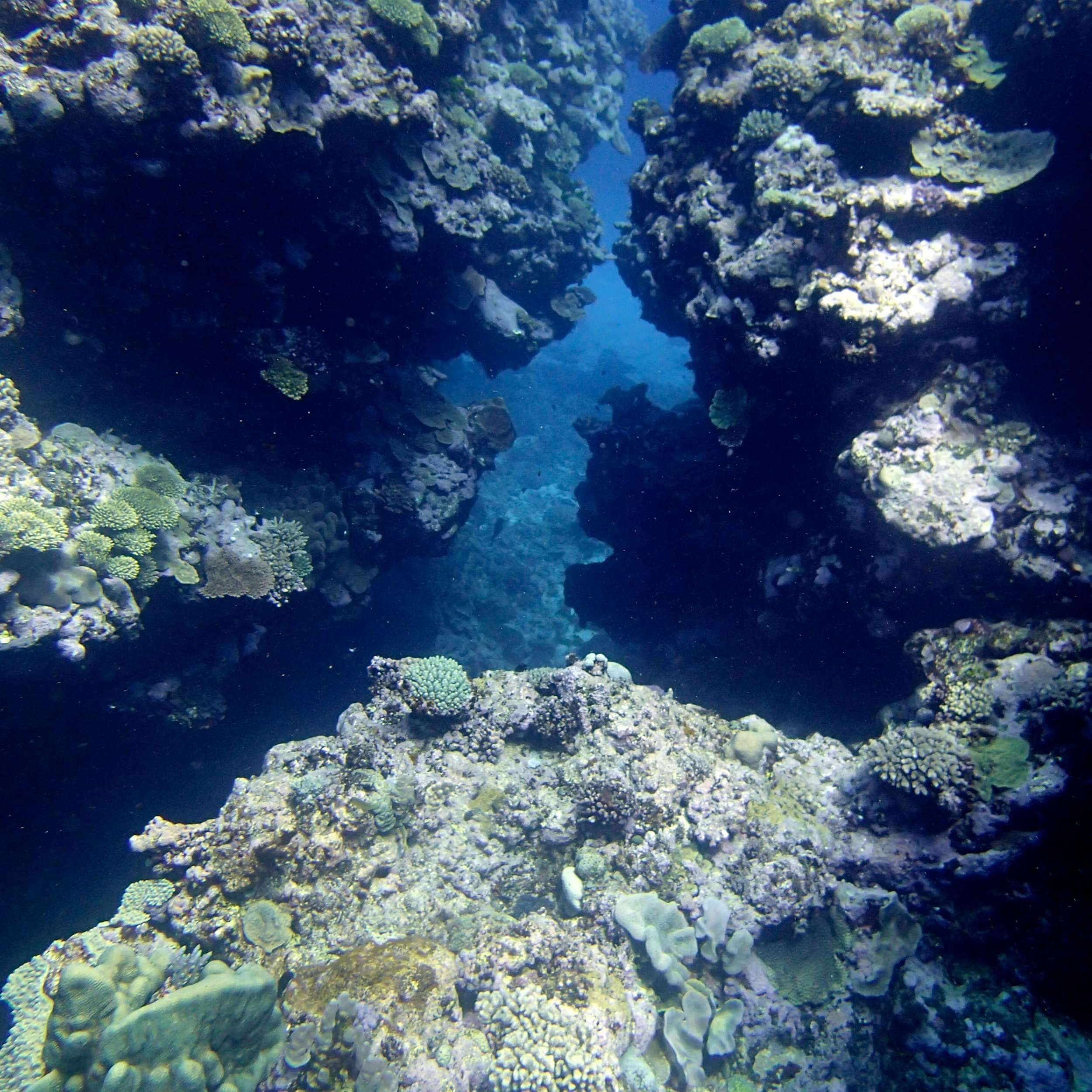 crack in the reef.jpg