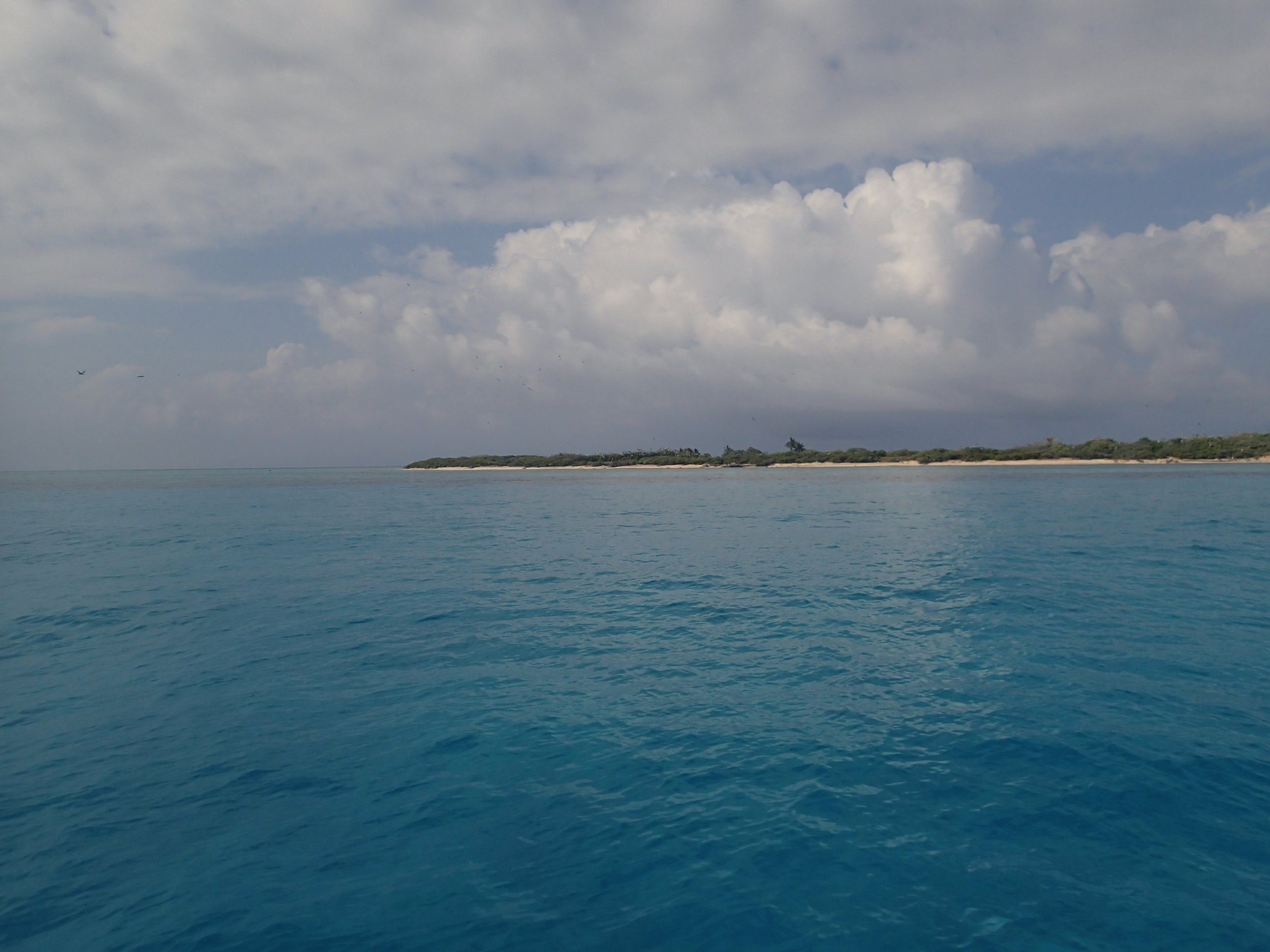 turquoise waters.jpg