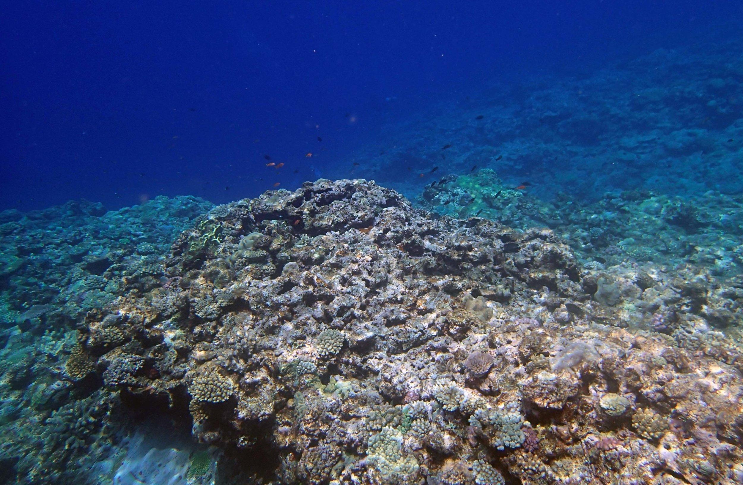 clearest water of trip.jpg