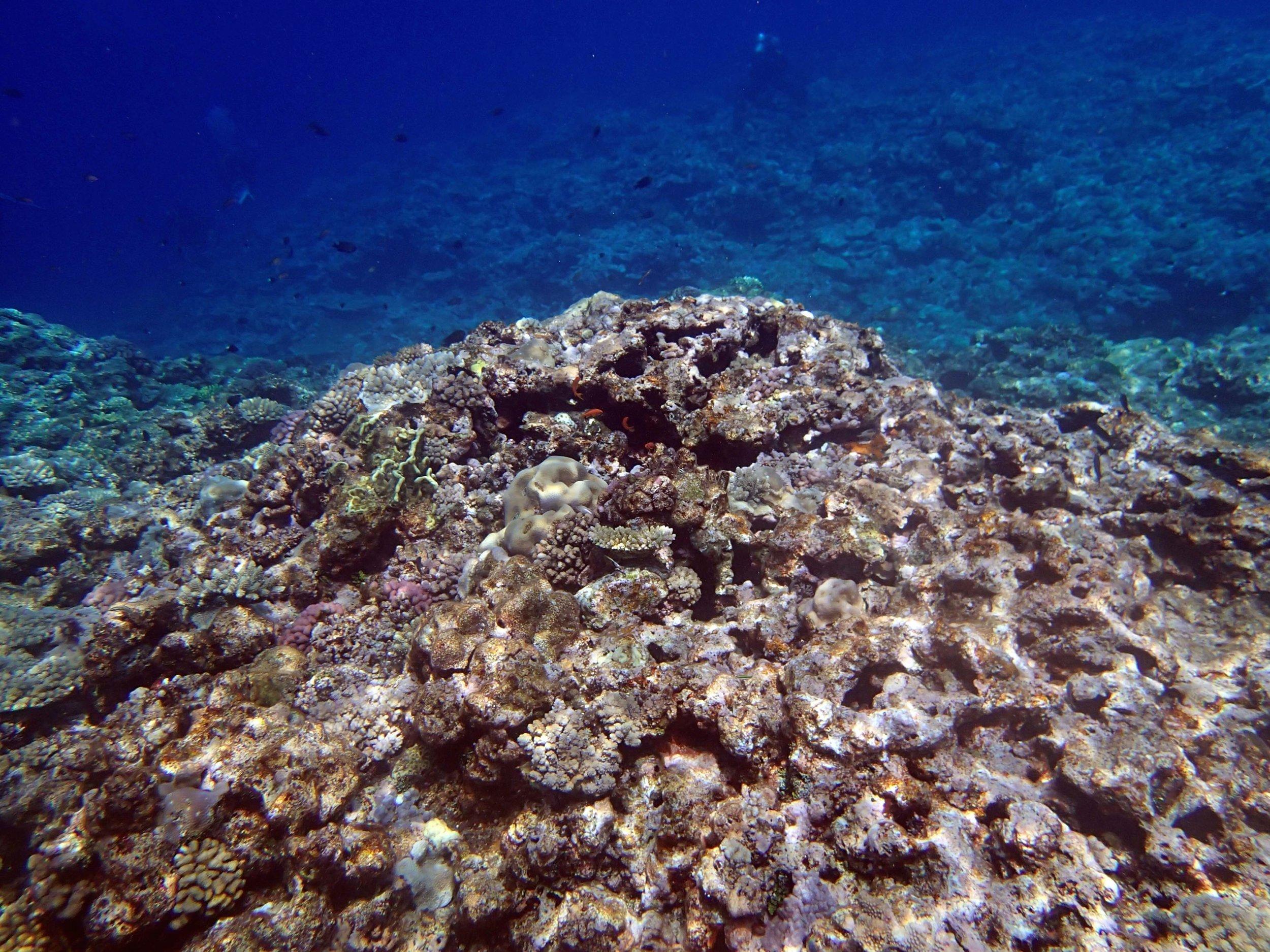 crystal clear waters.jpg