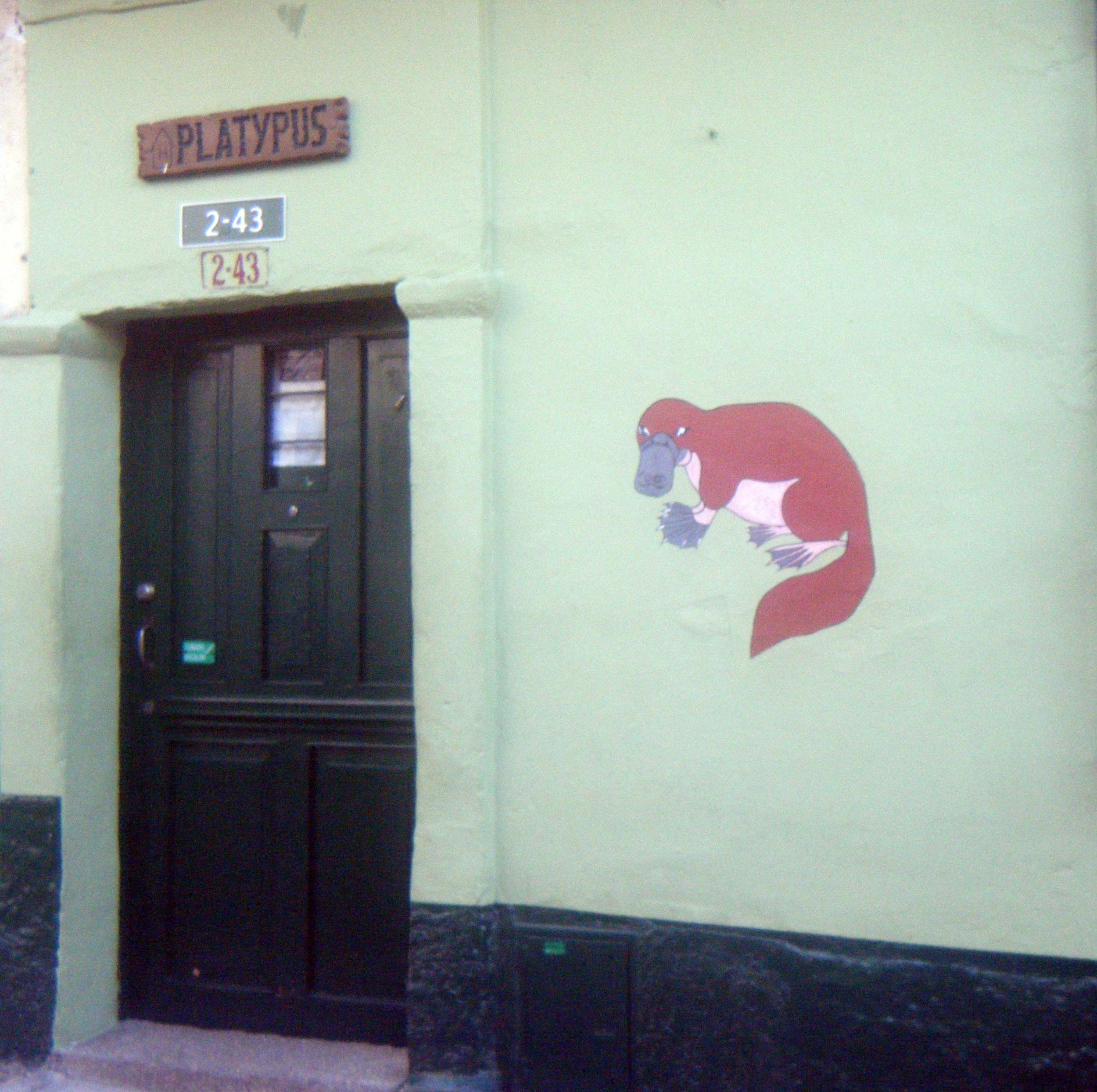 Hostel Platypus.jpg