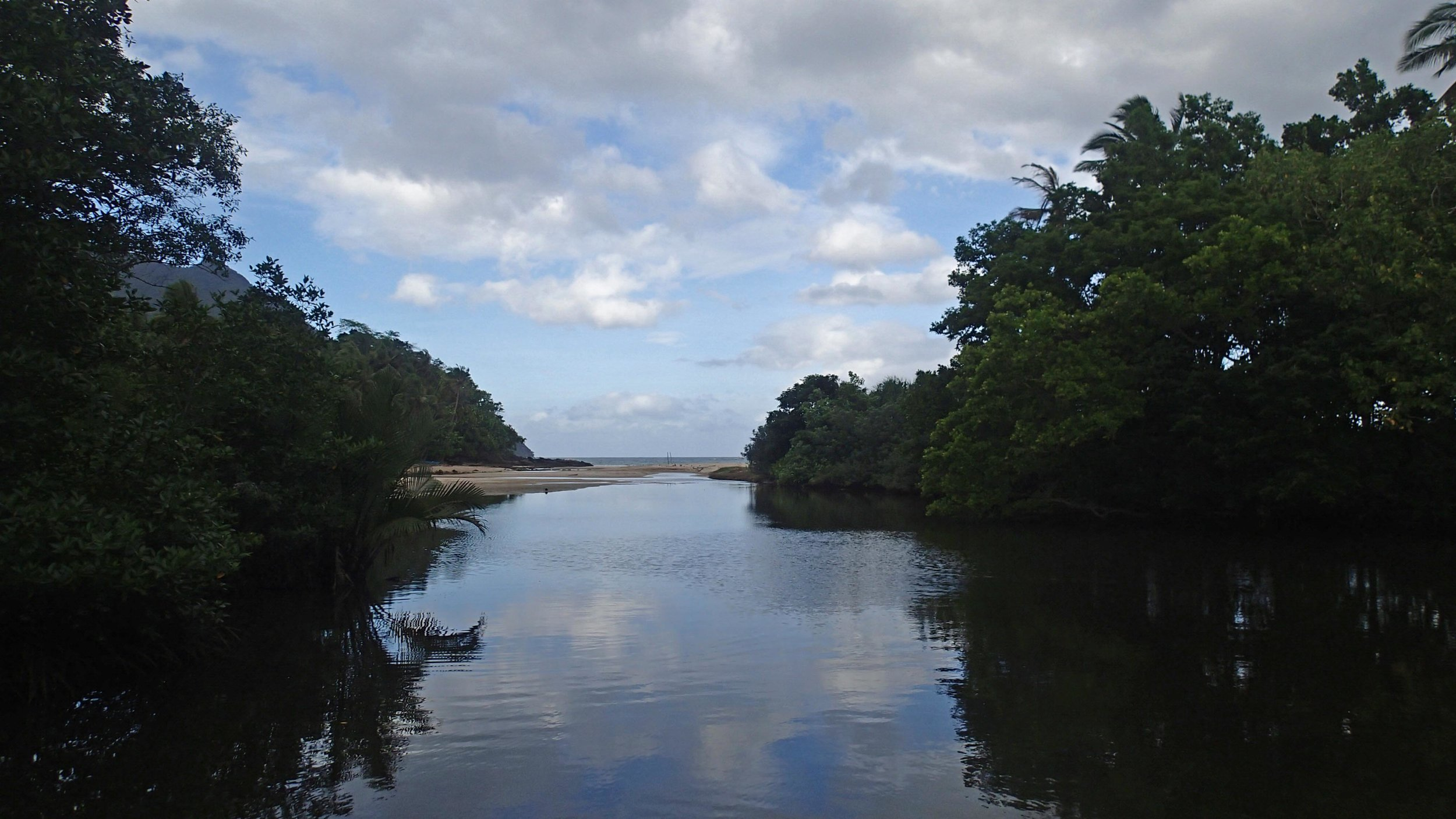 entrance to mangroves.jpg