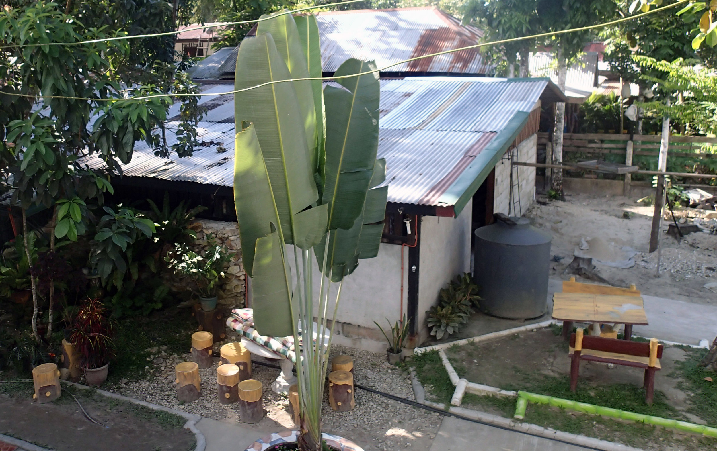coconut oil refinery.jpg