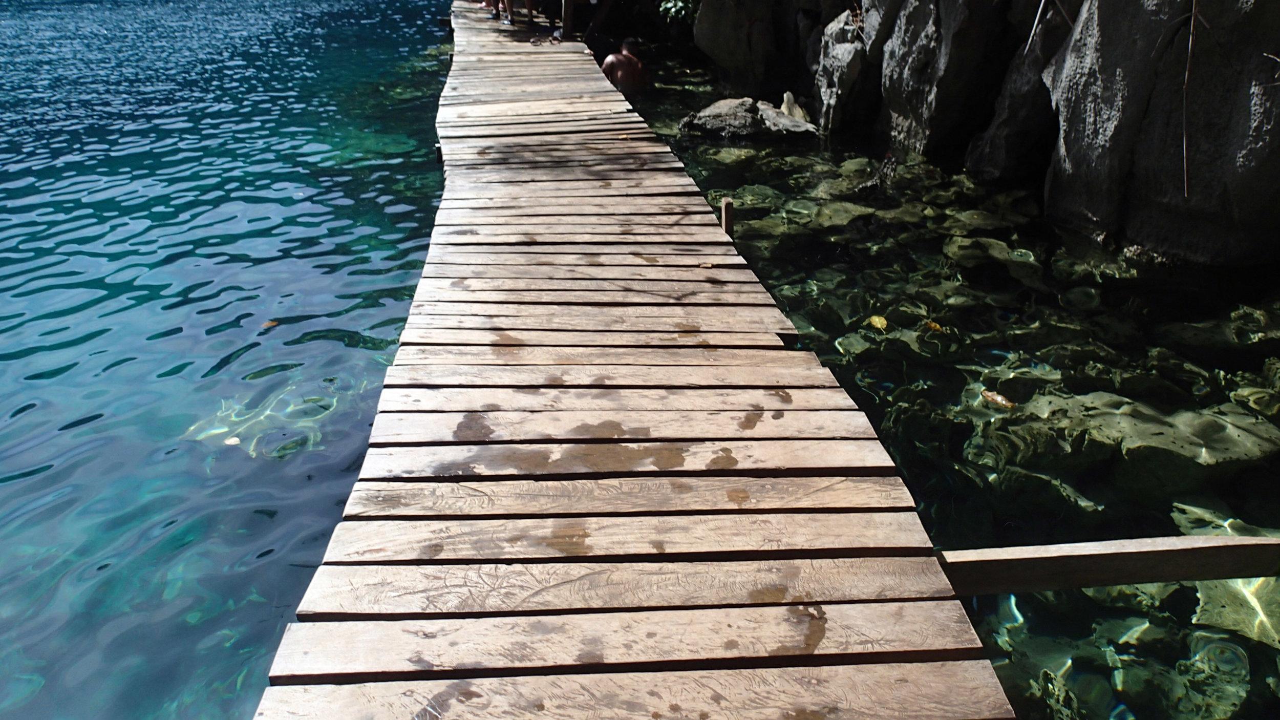 walk the planks.jpg