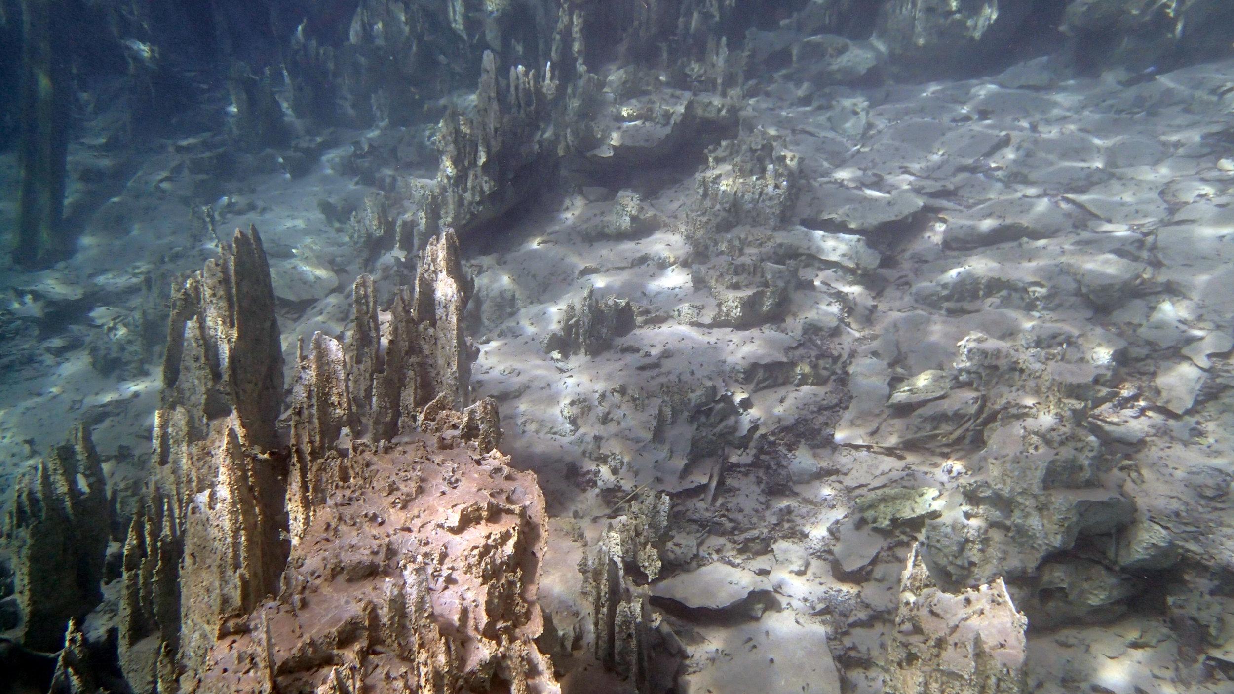snorkeling Kayangan Lake.jpg