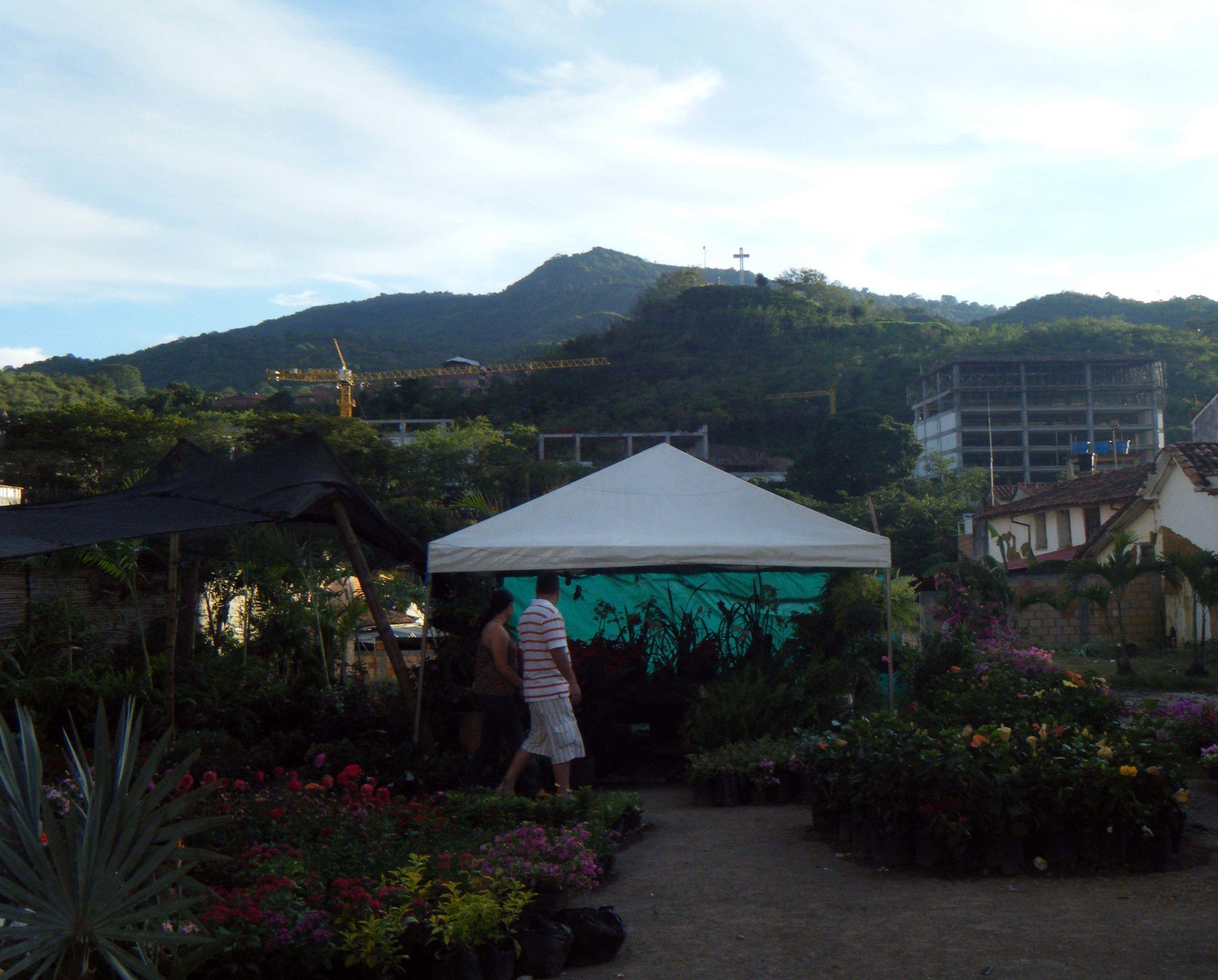 flower market.jpg