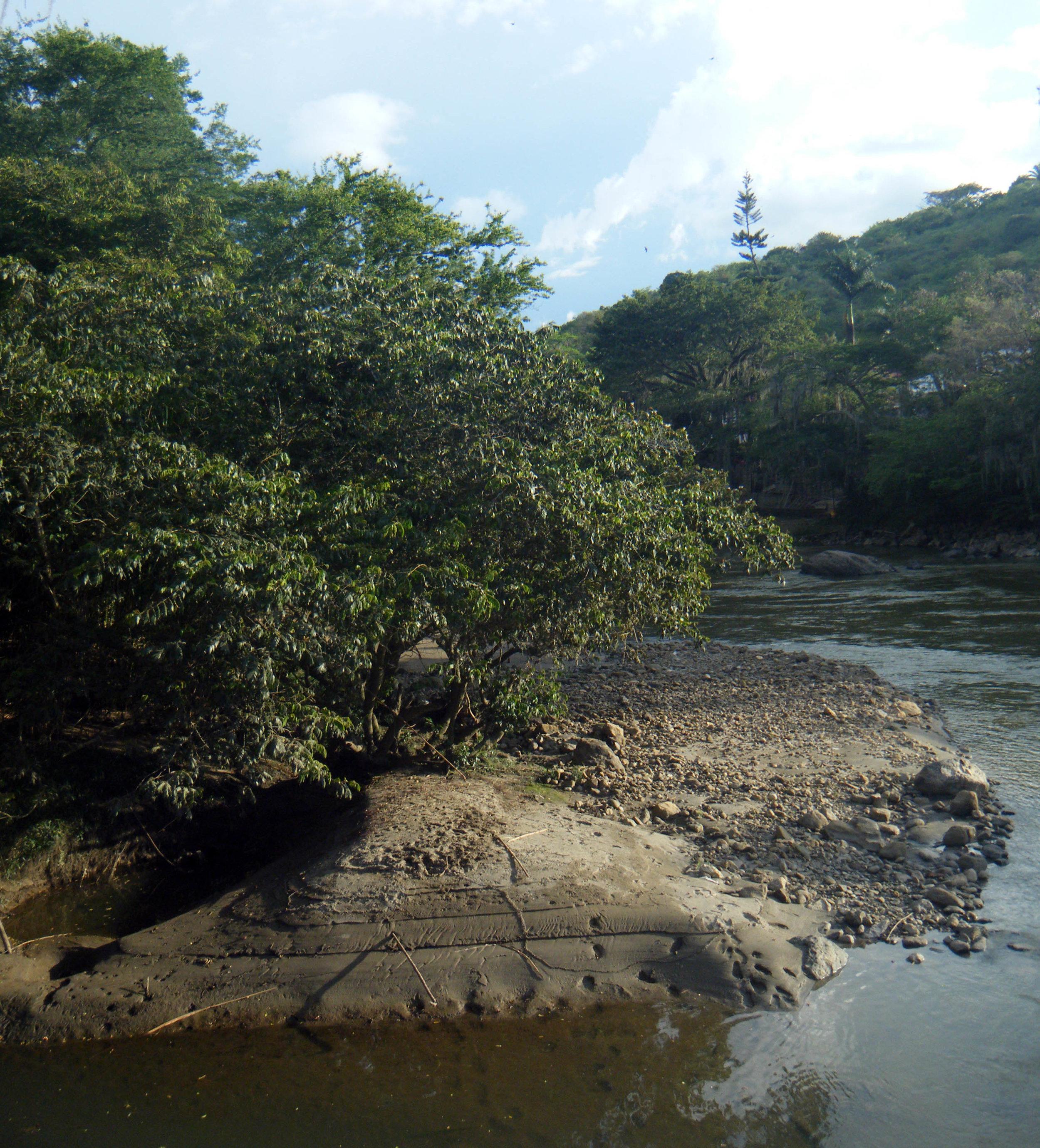 Rio Fonce 2.jpg