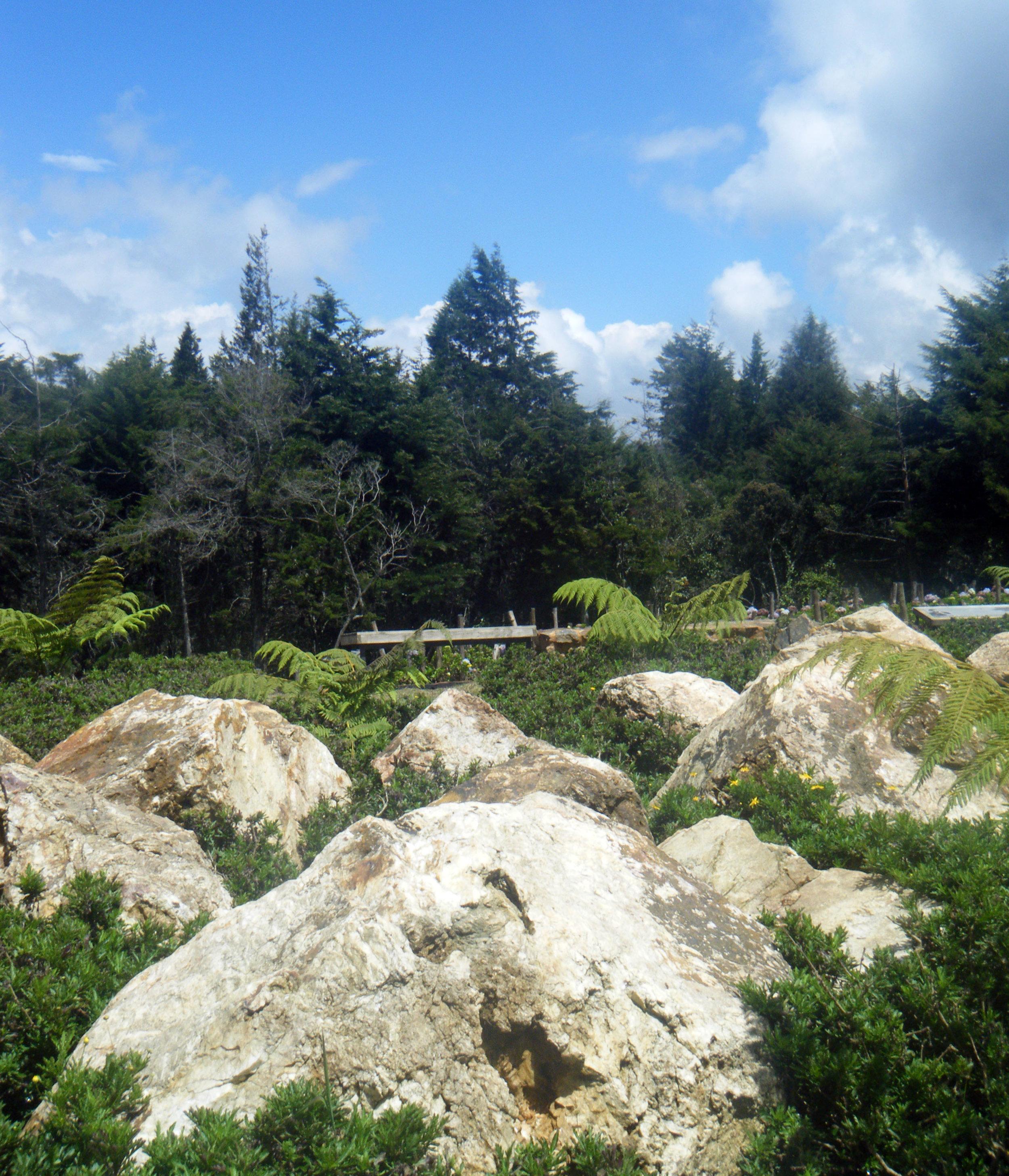Parque Arvi 10-20-12.jpg
