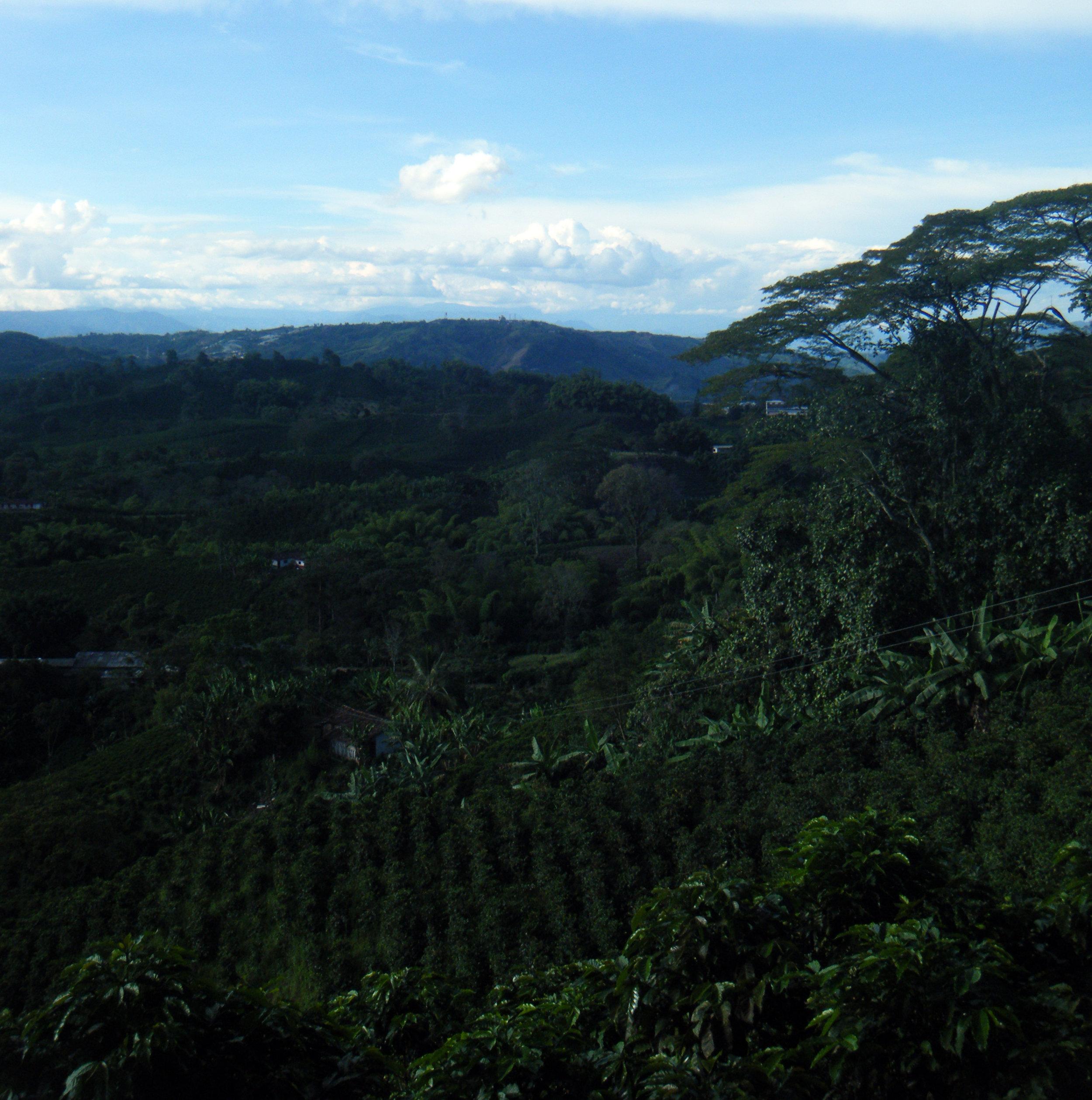 northwestern Colombia.jpg