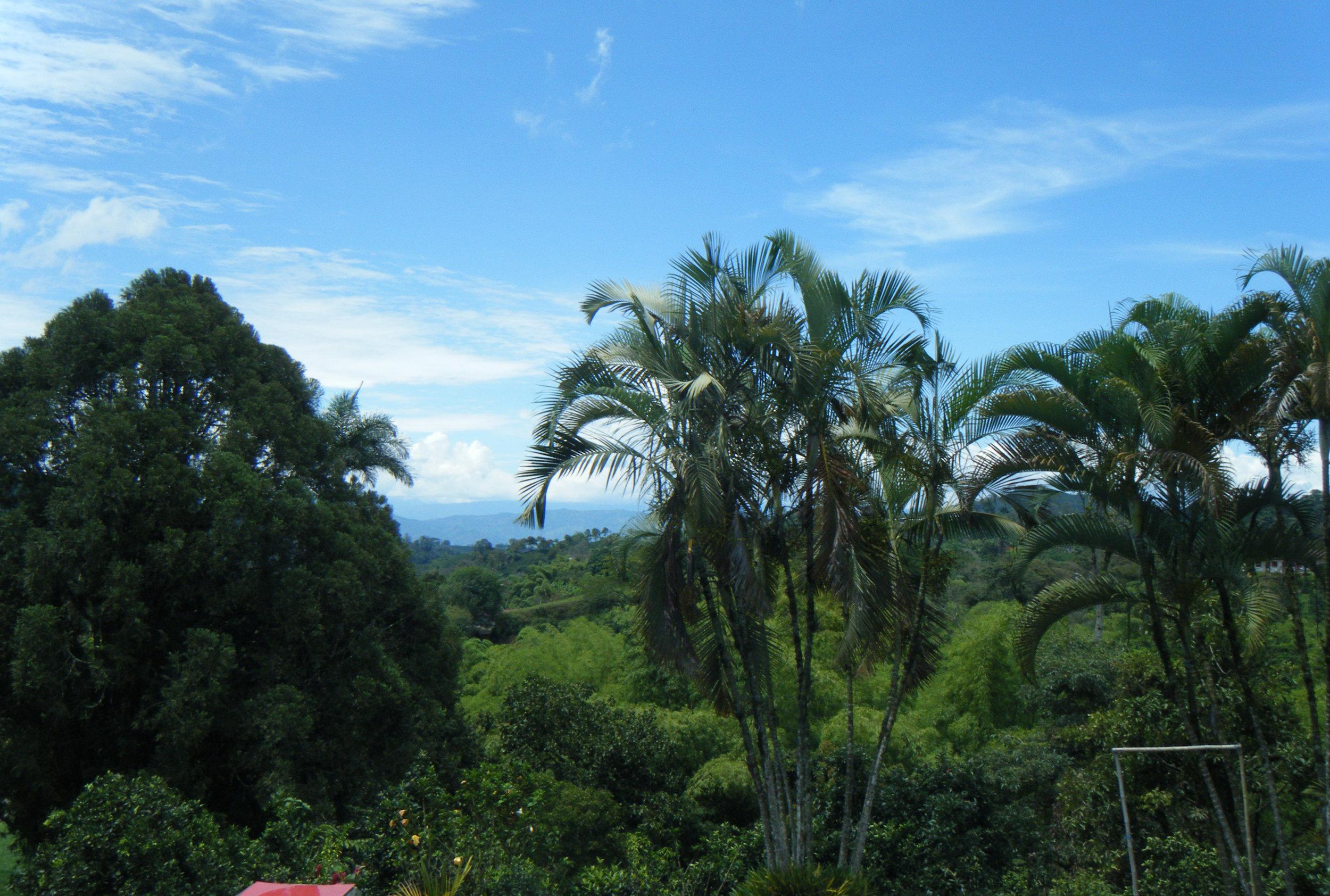 Hacienda Guayabal 10-21-12.jpg