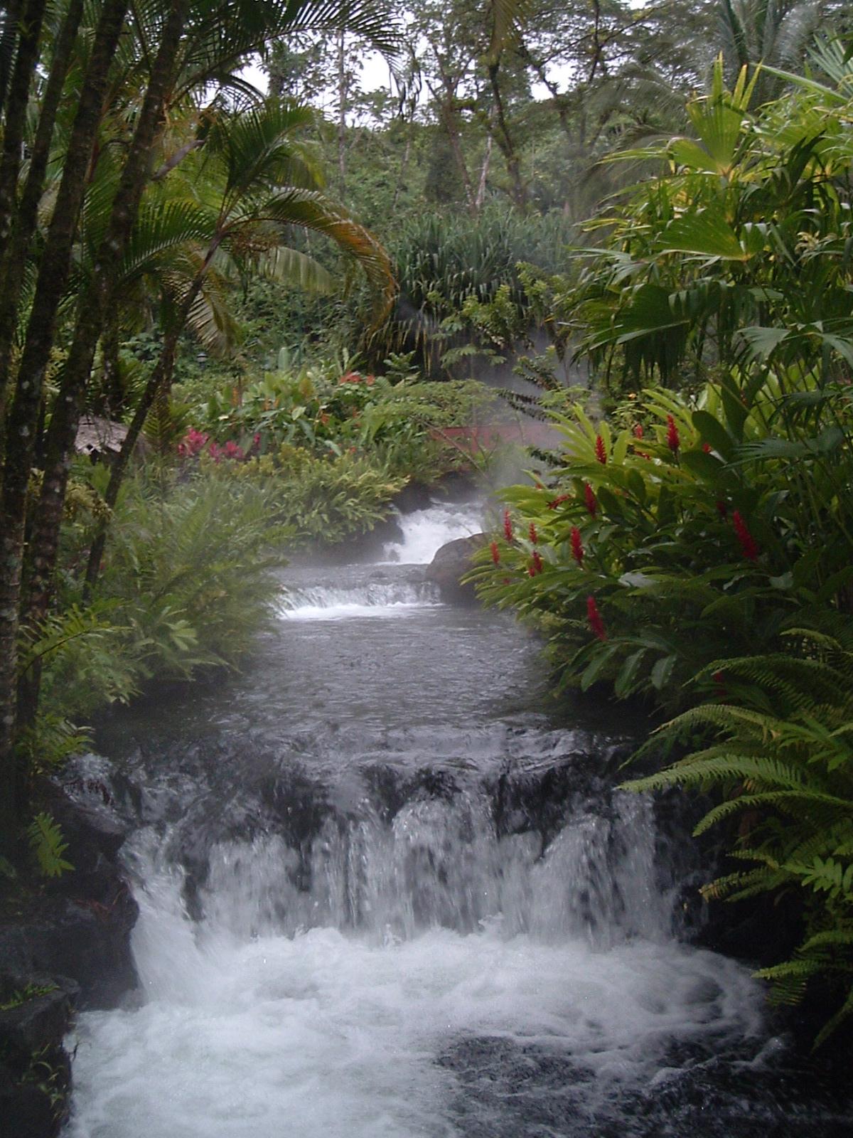 costaricapics 131.jpg