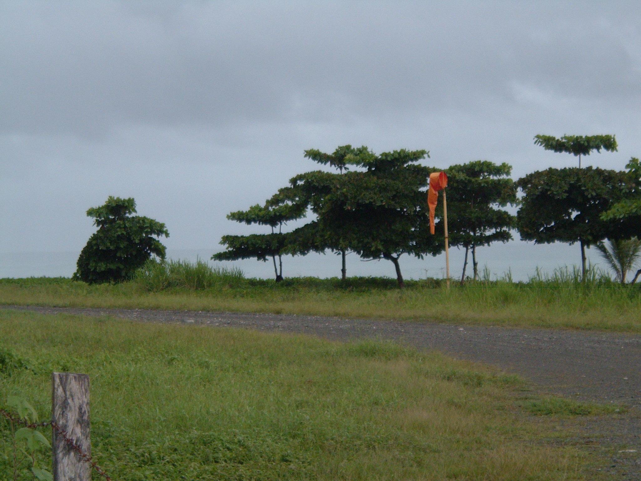 costaricapics 090.jpg