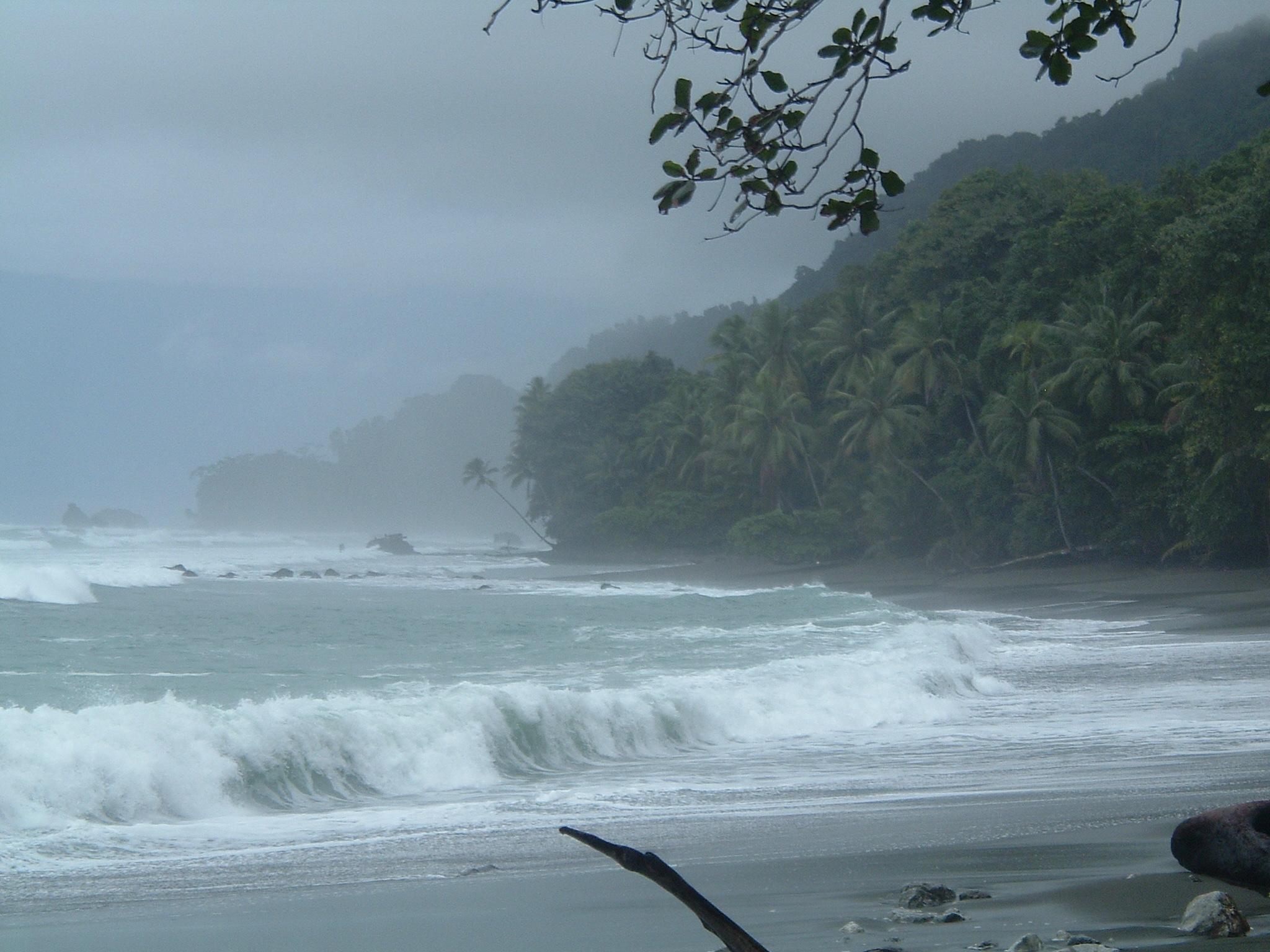 costaricapics 082.jpg