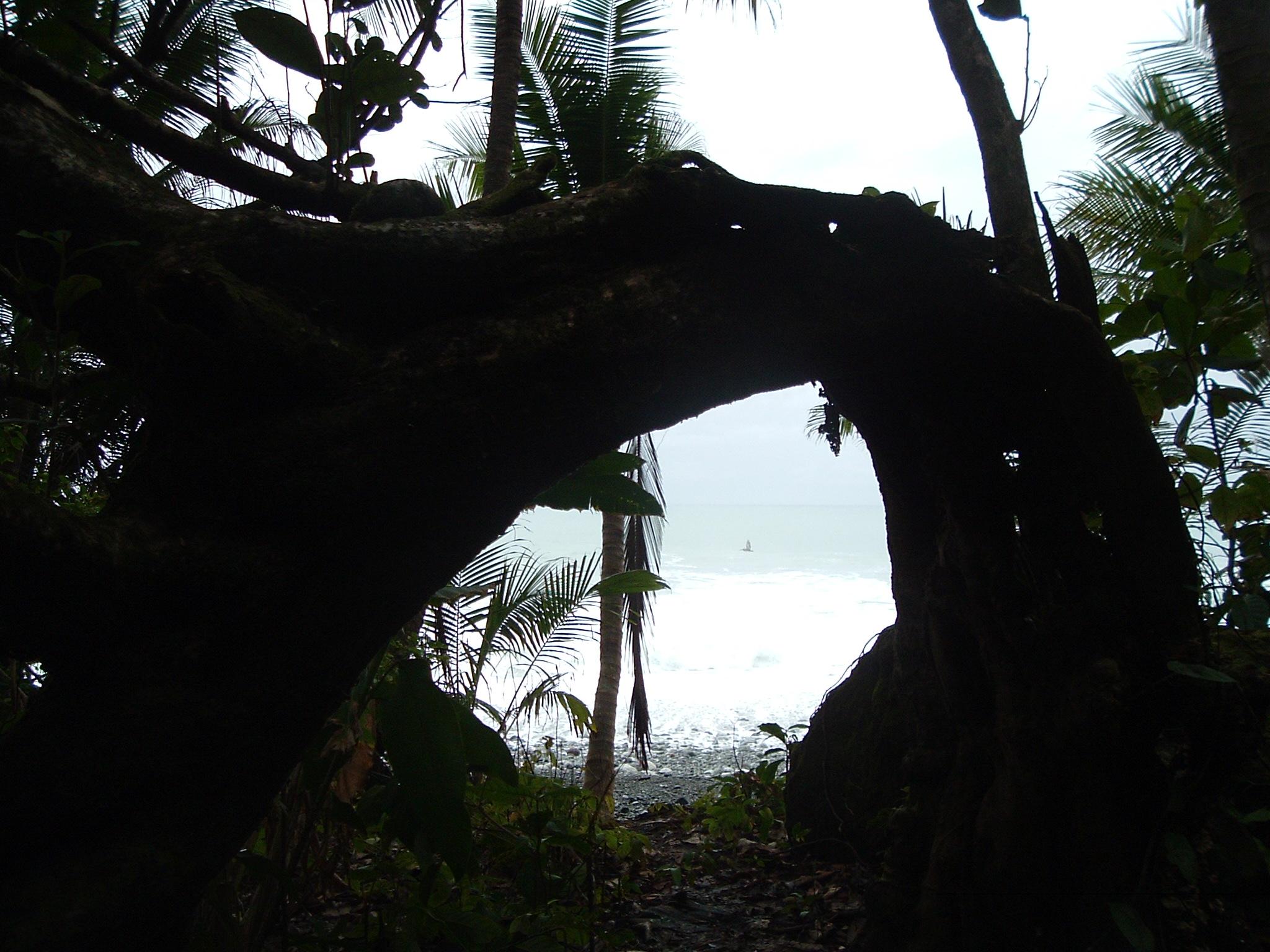 costaricapics 079.jpg