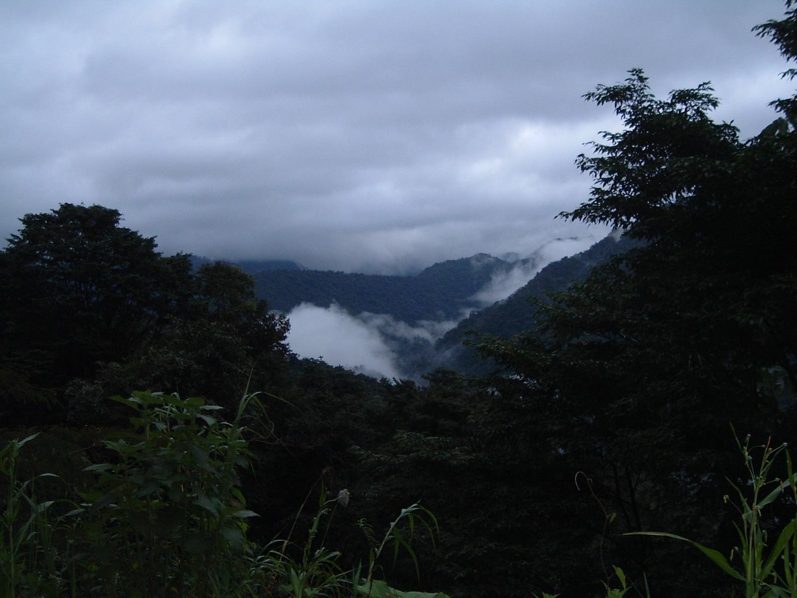 costaricapics 037.jpg