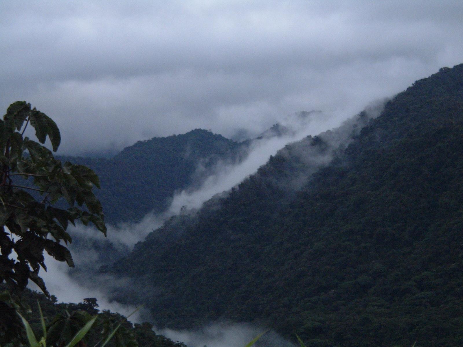 costaricapics 035.jpg