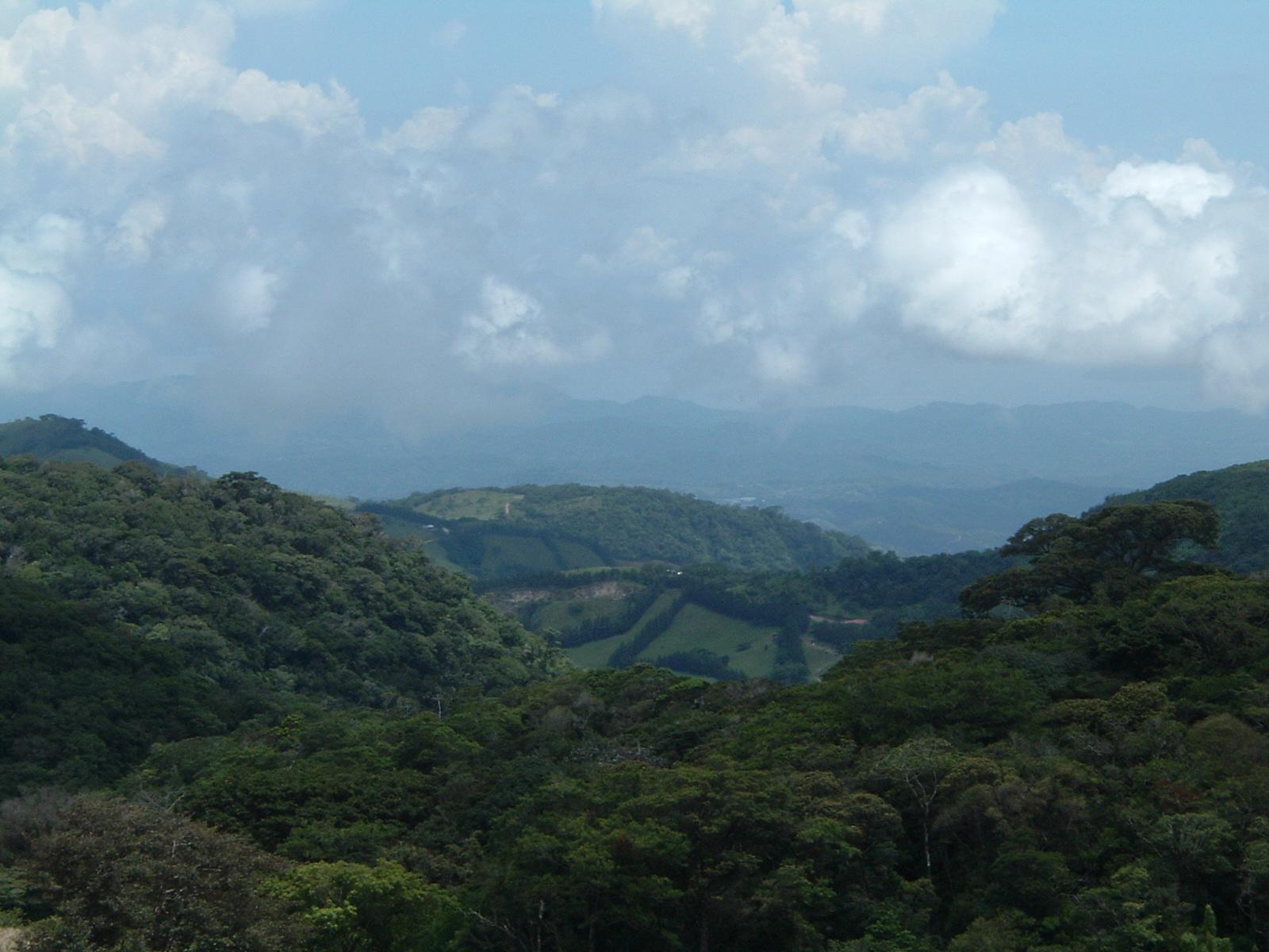 costaricapics 007.jpg