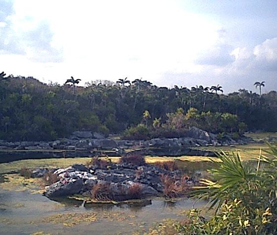 lagunalagartos9.jpg