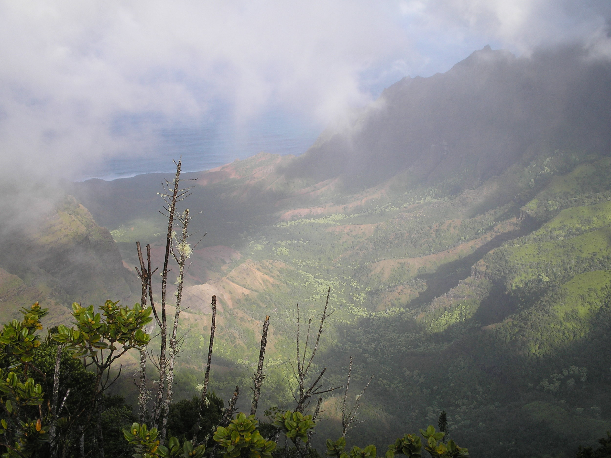 misty kalalau valley.jpg