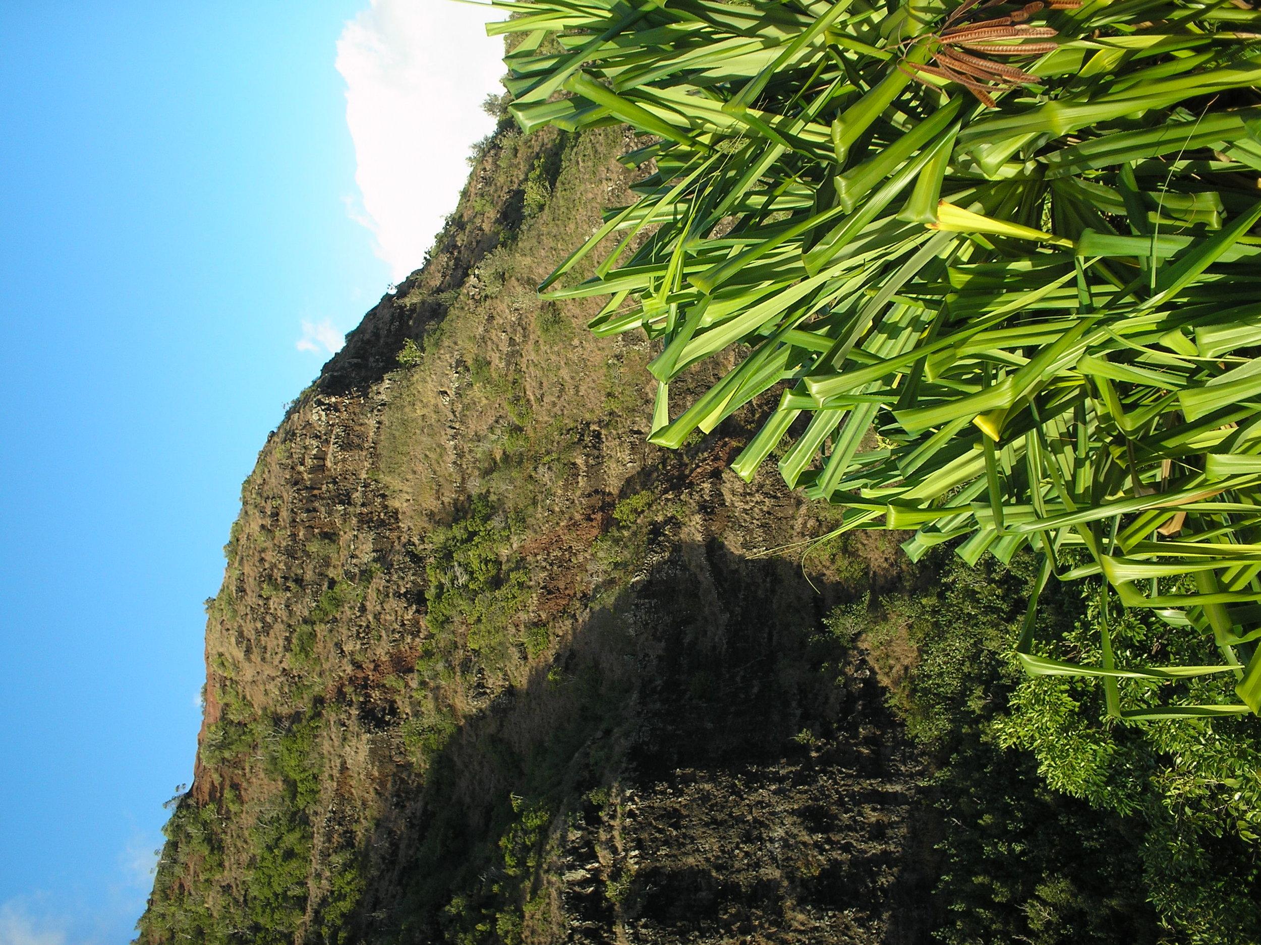 view from opaekaa.jpg