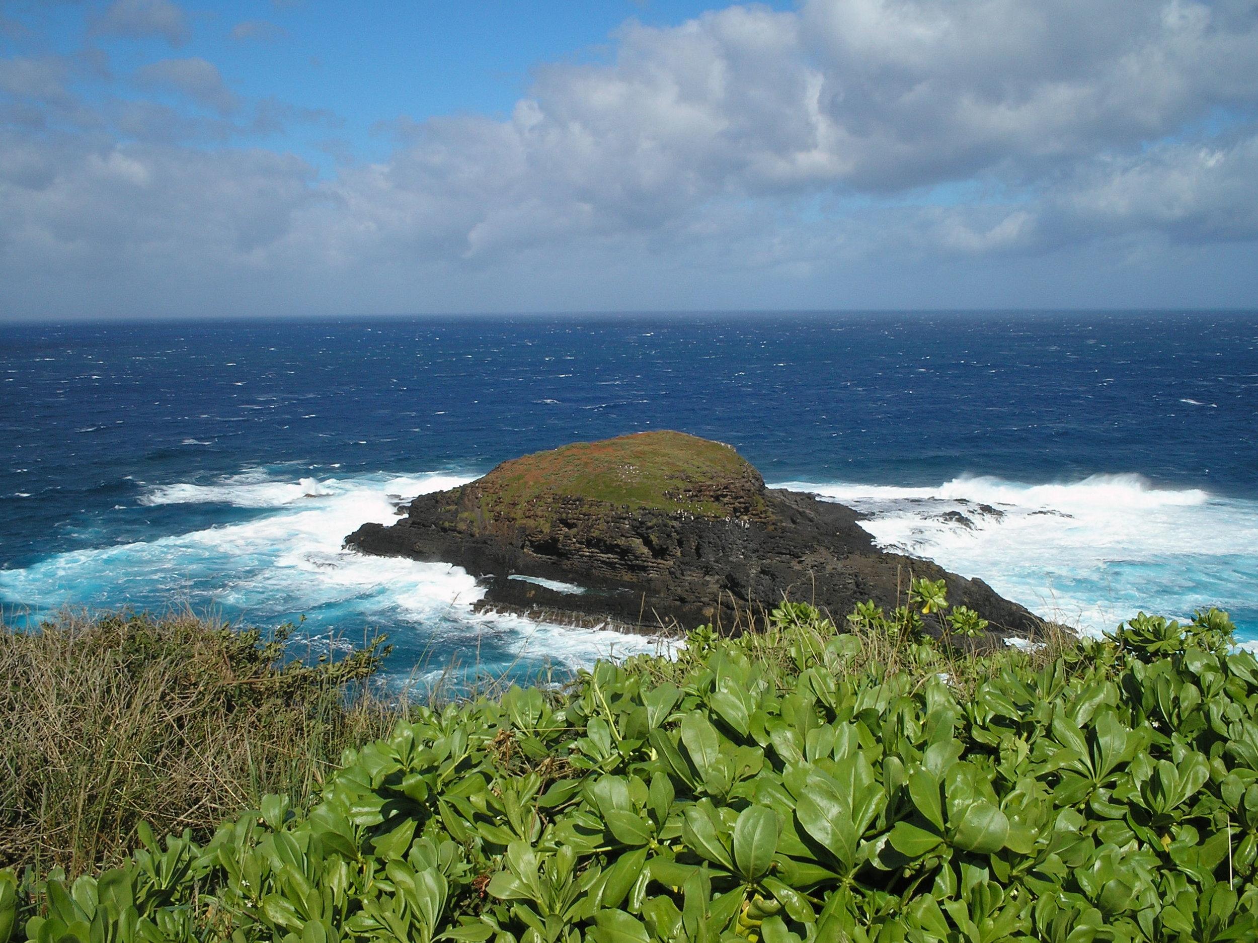 island off kilauea point.jpg