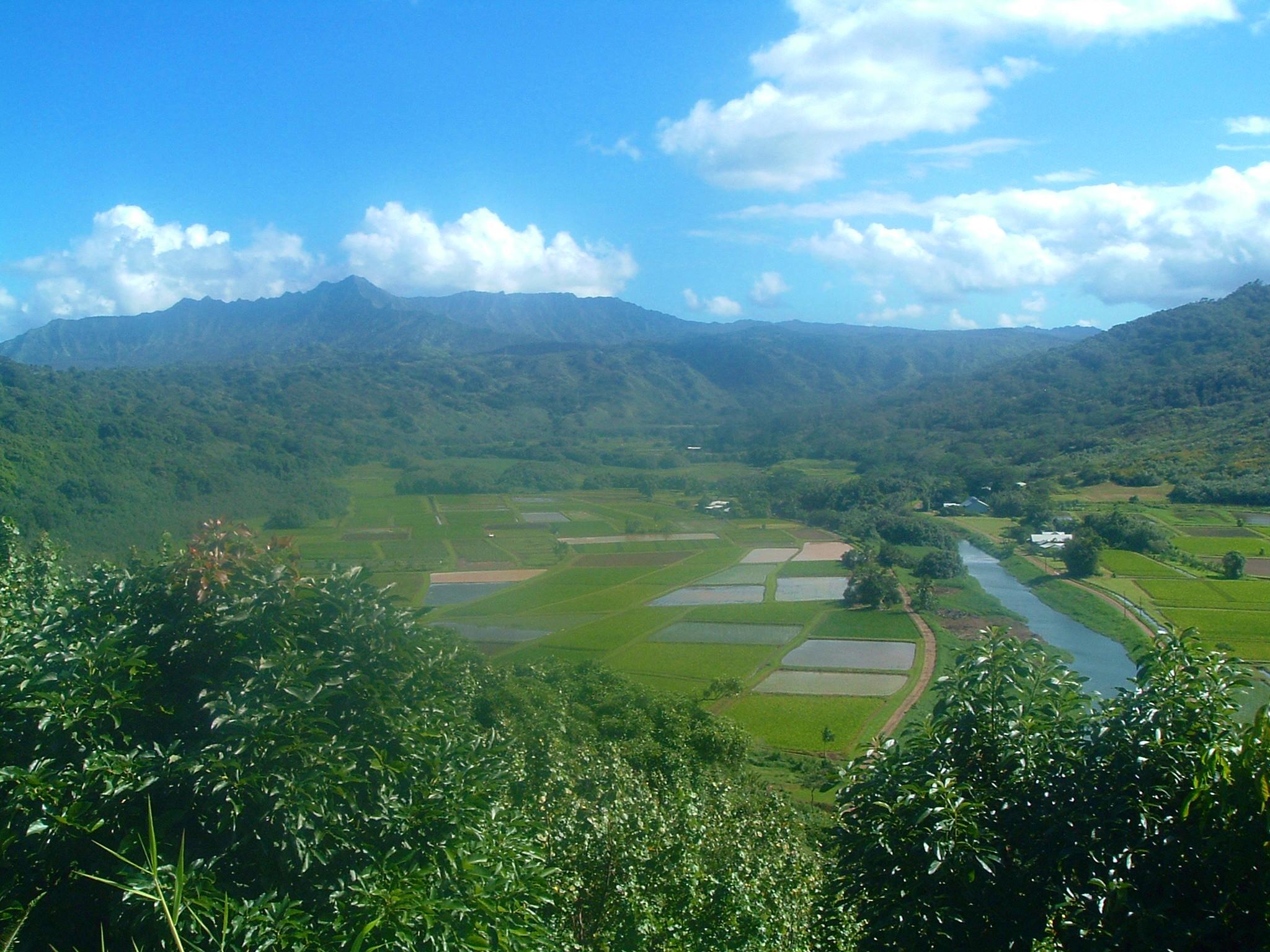 kauai lookout.JPG