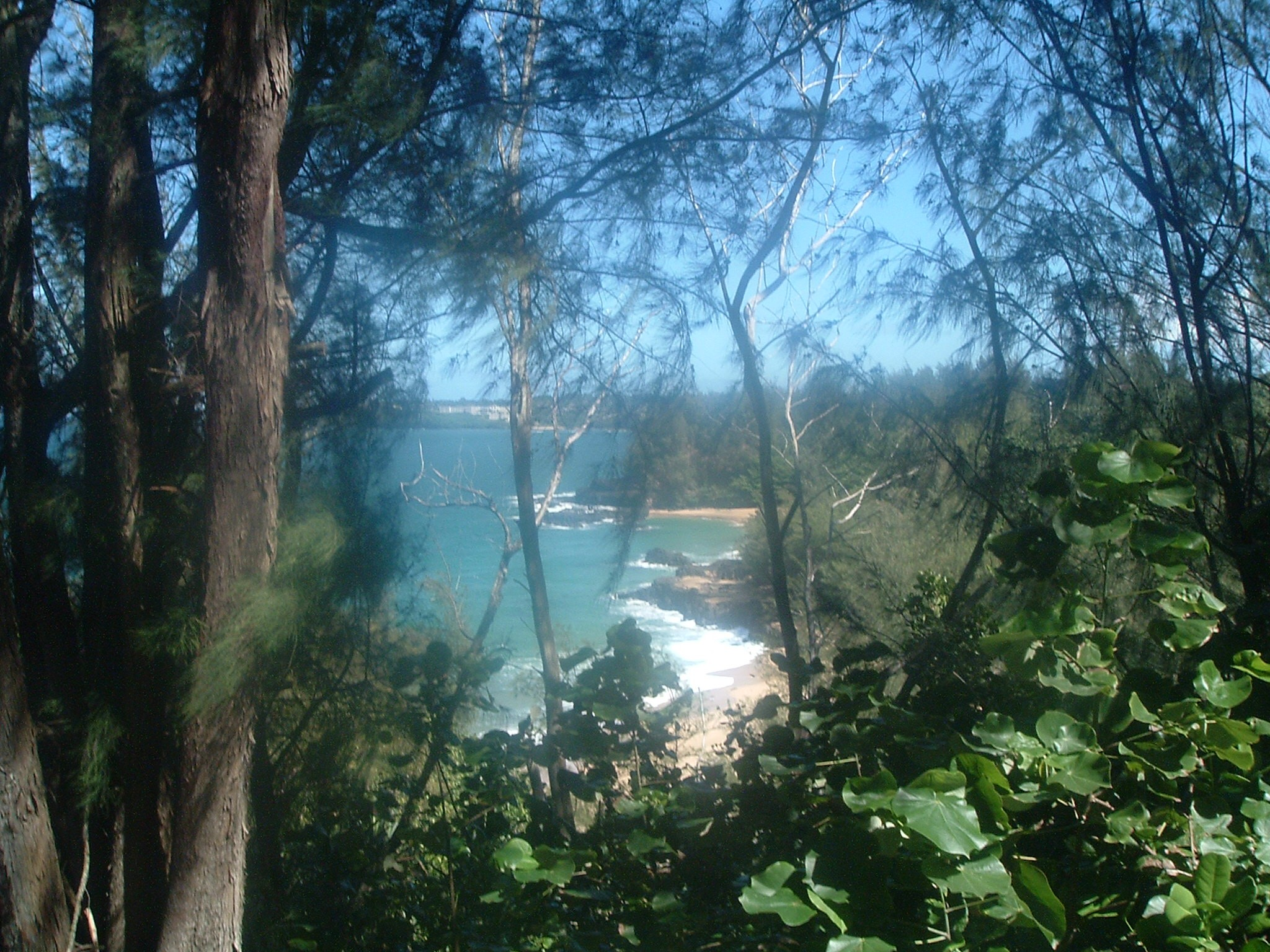 kauai north shore.JPG