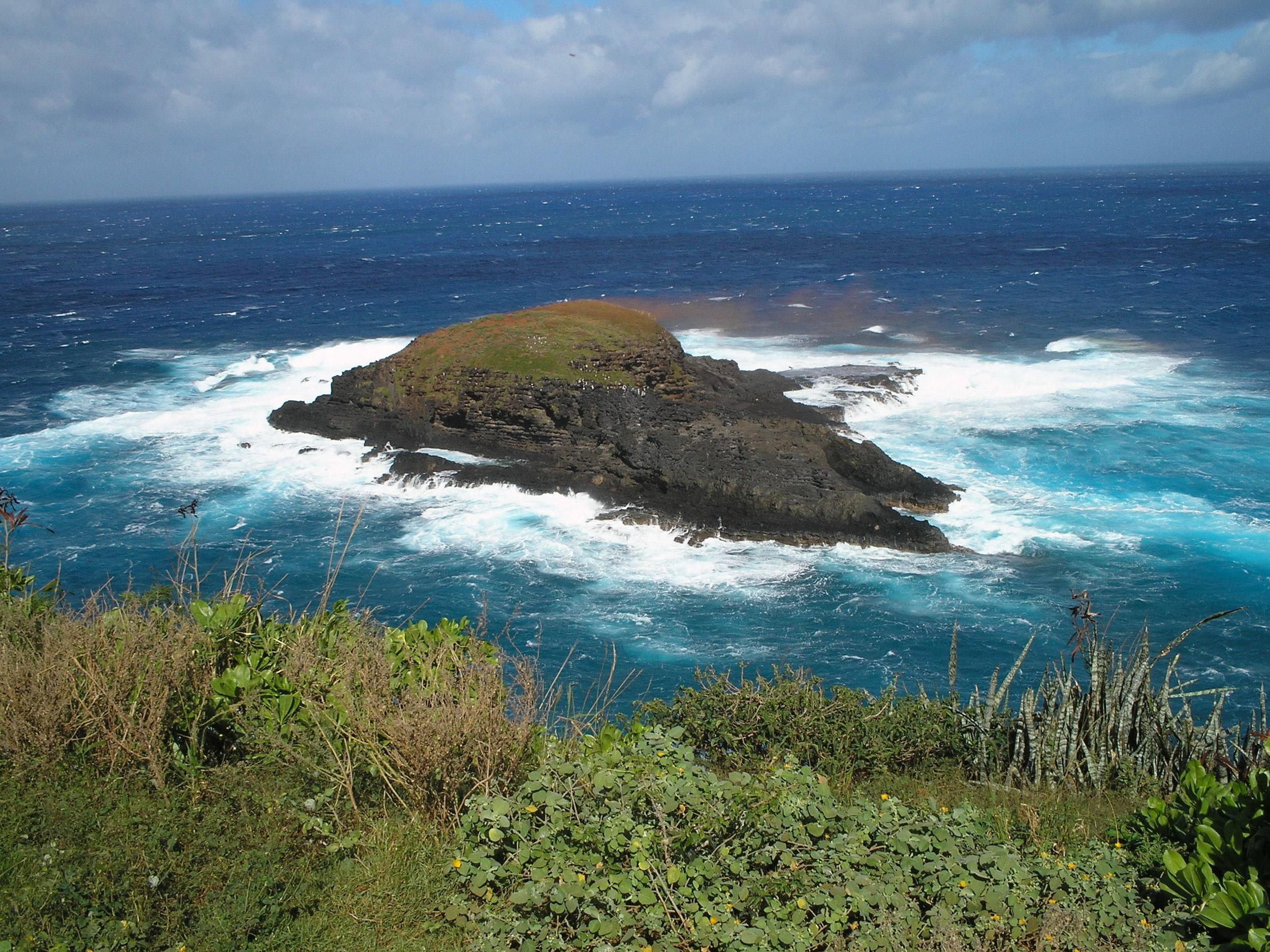 kilauea point island.jpg